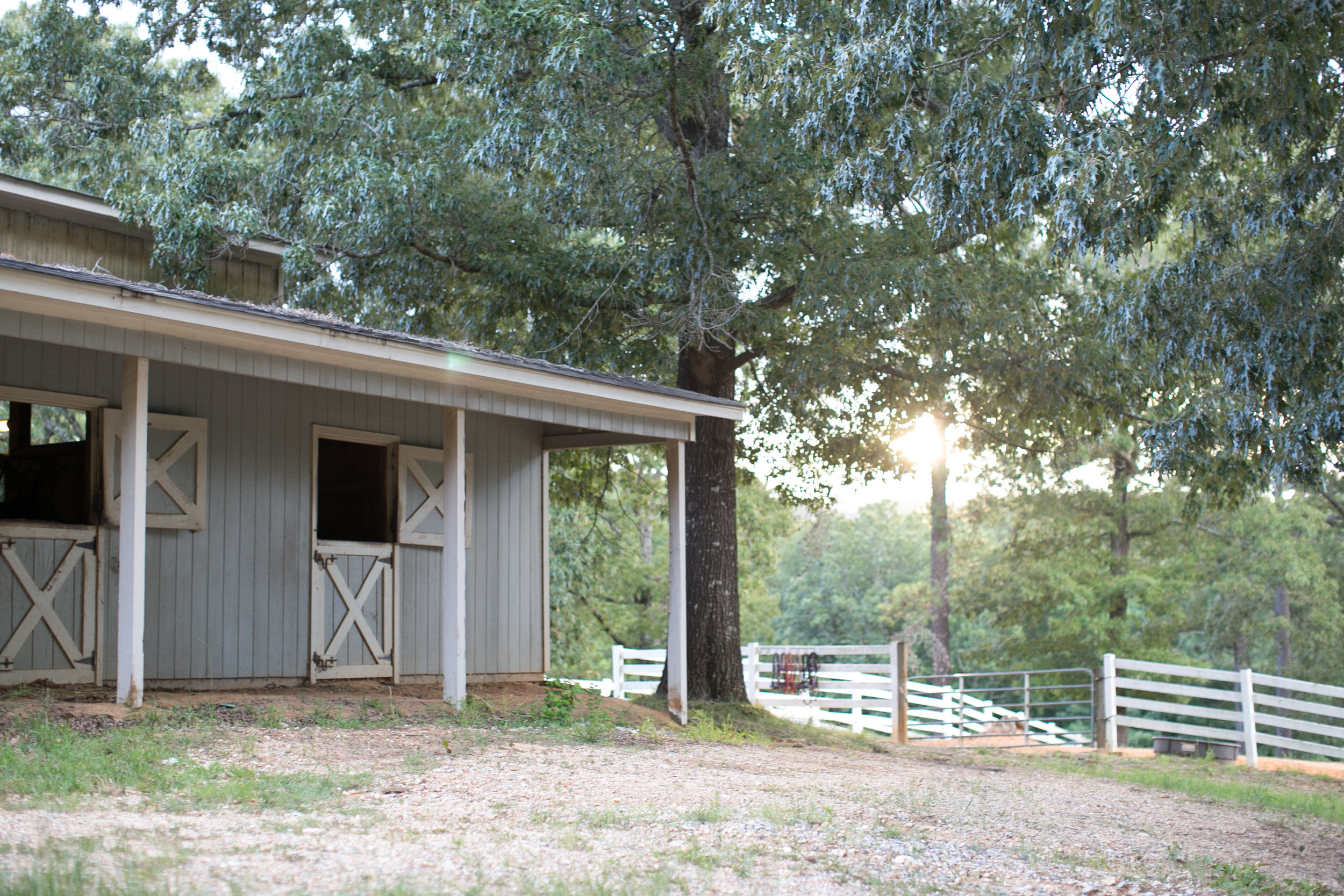 Shoal Creek Properties-5.jpg