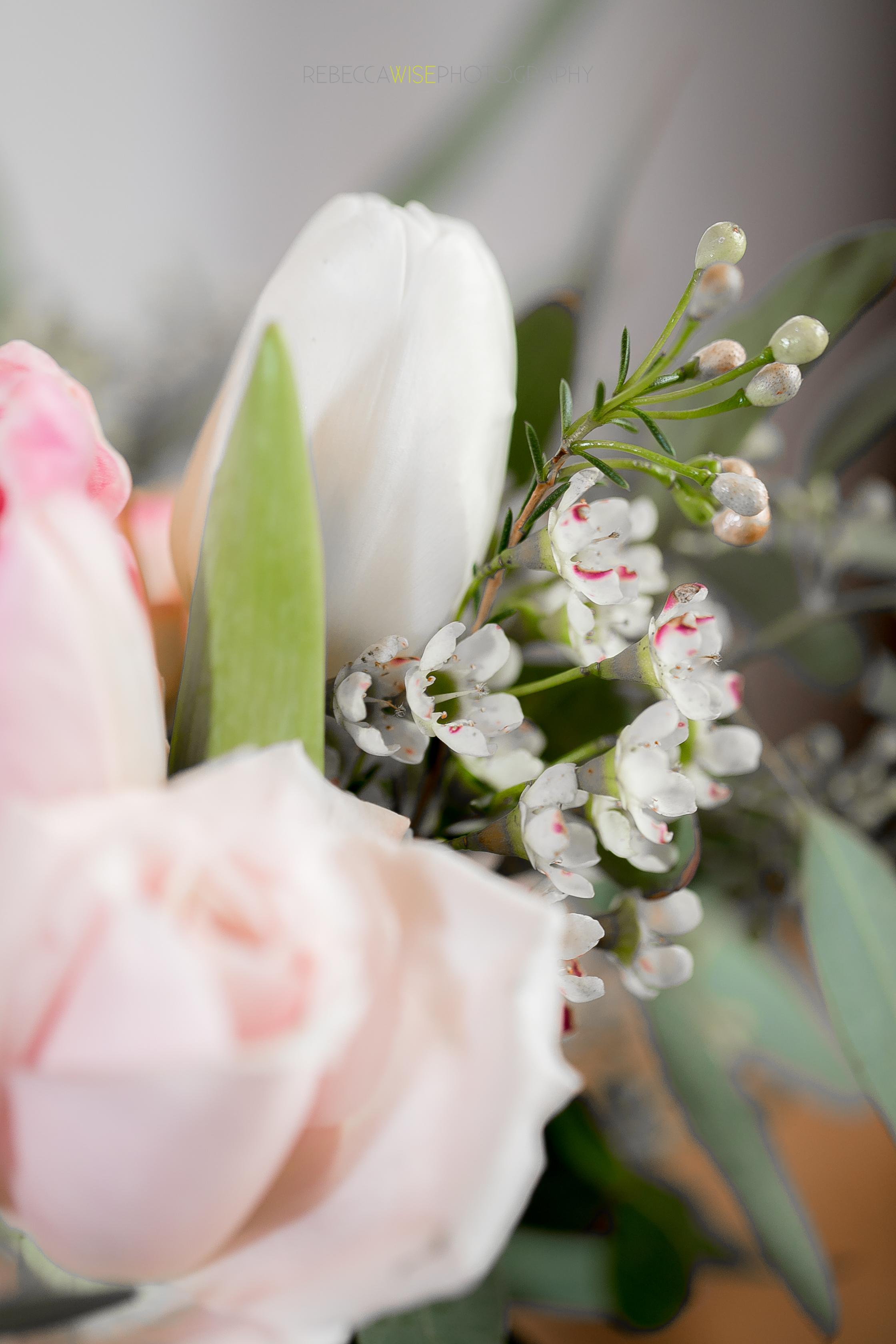 flowers (4 of 8).jpg