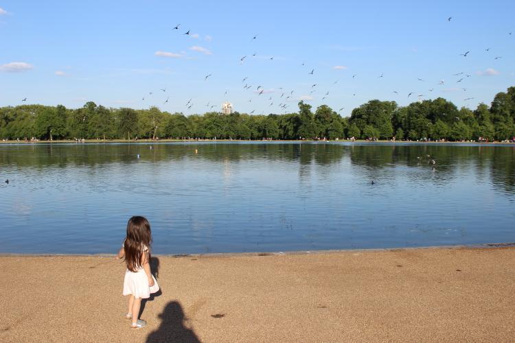 The round pond, Hyde park