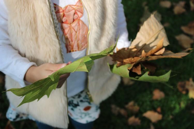 UK Lifestyle Blog - Autumn leaves