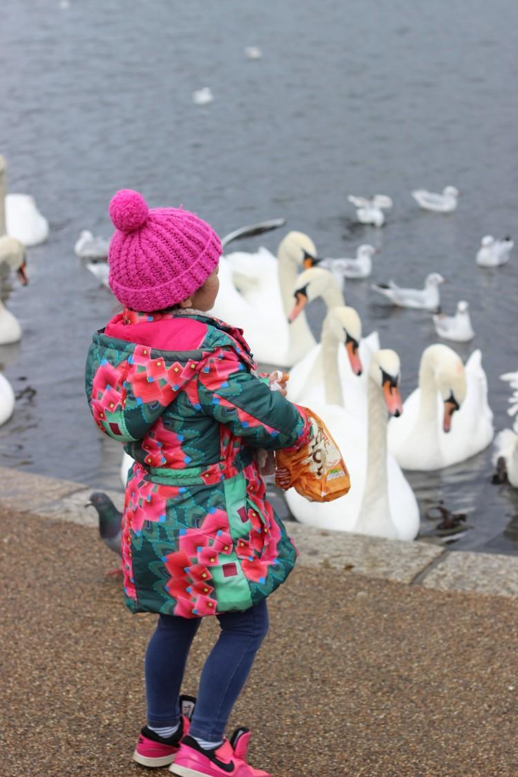 London blog - round pond hyde park