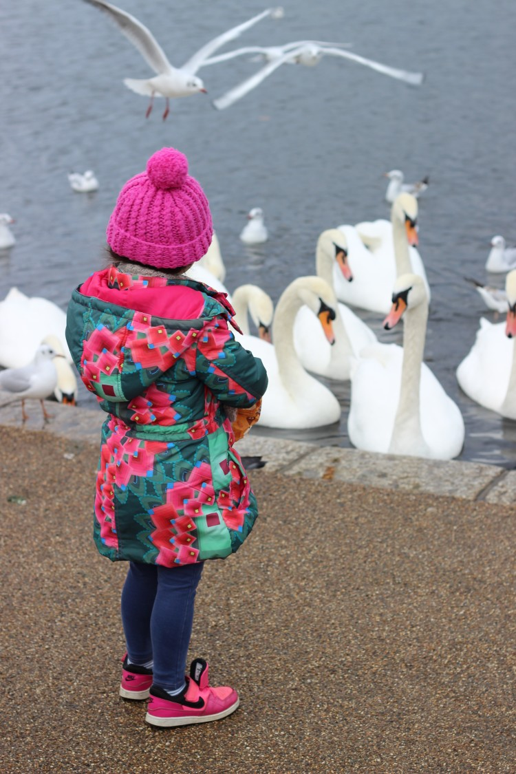 London travel blog - pond hyde park