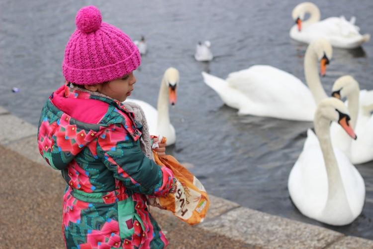 London Lifestyle Blog - pond hyde park london