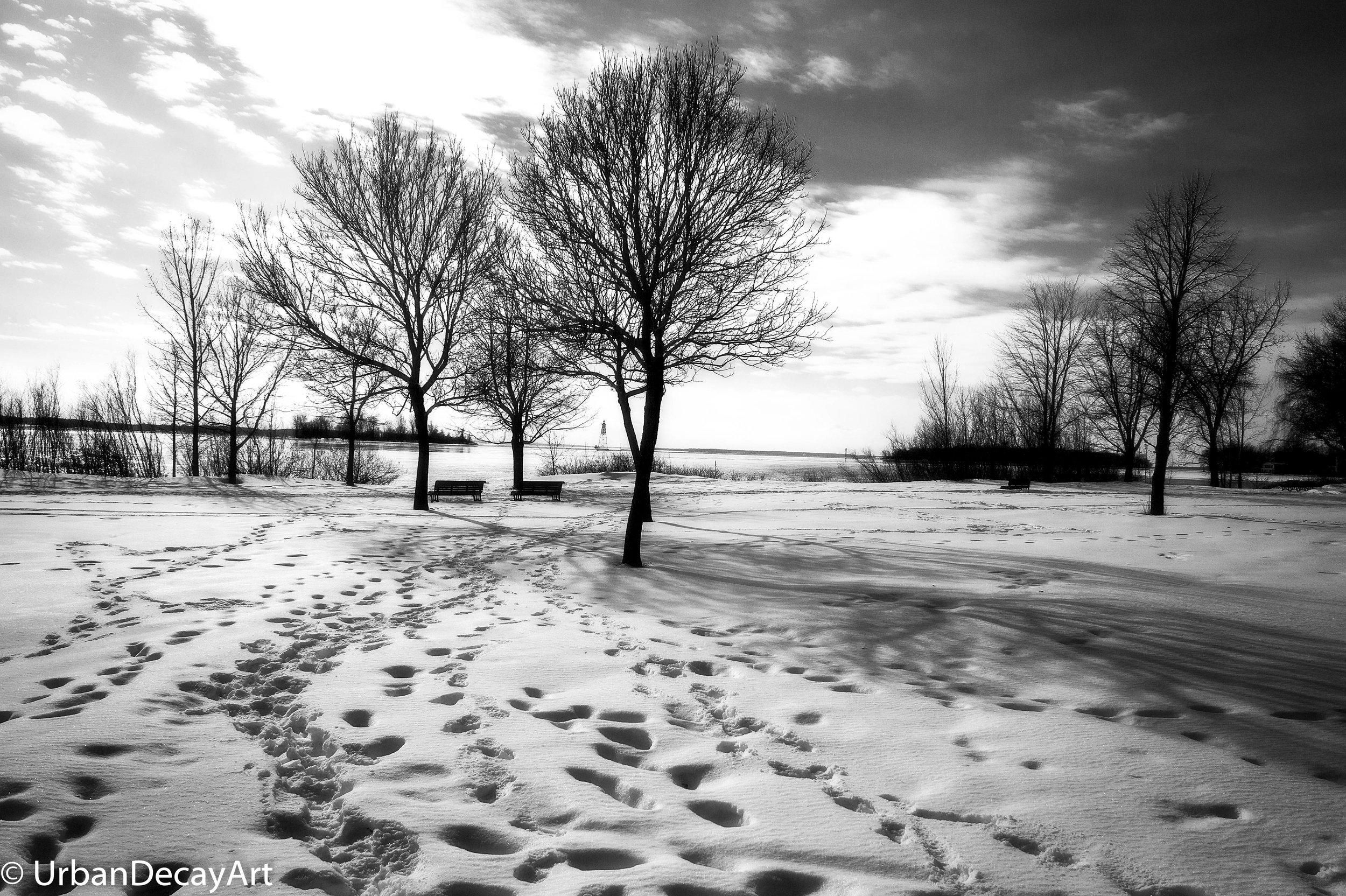 Winter Park-.jpg