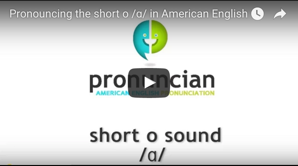 Watch our 'Short o' video here.