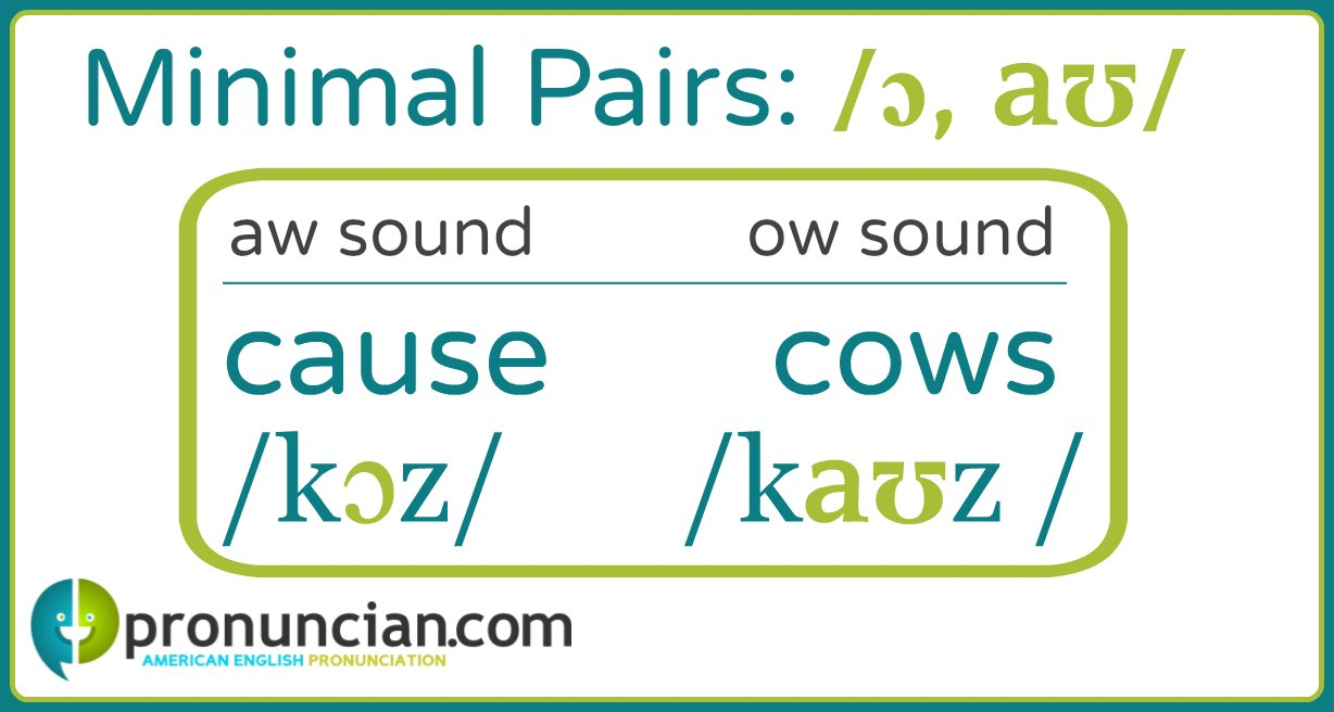 """""""Cause"""" and """"cows"""" are aw sound/ow sound minimal pairs."""