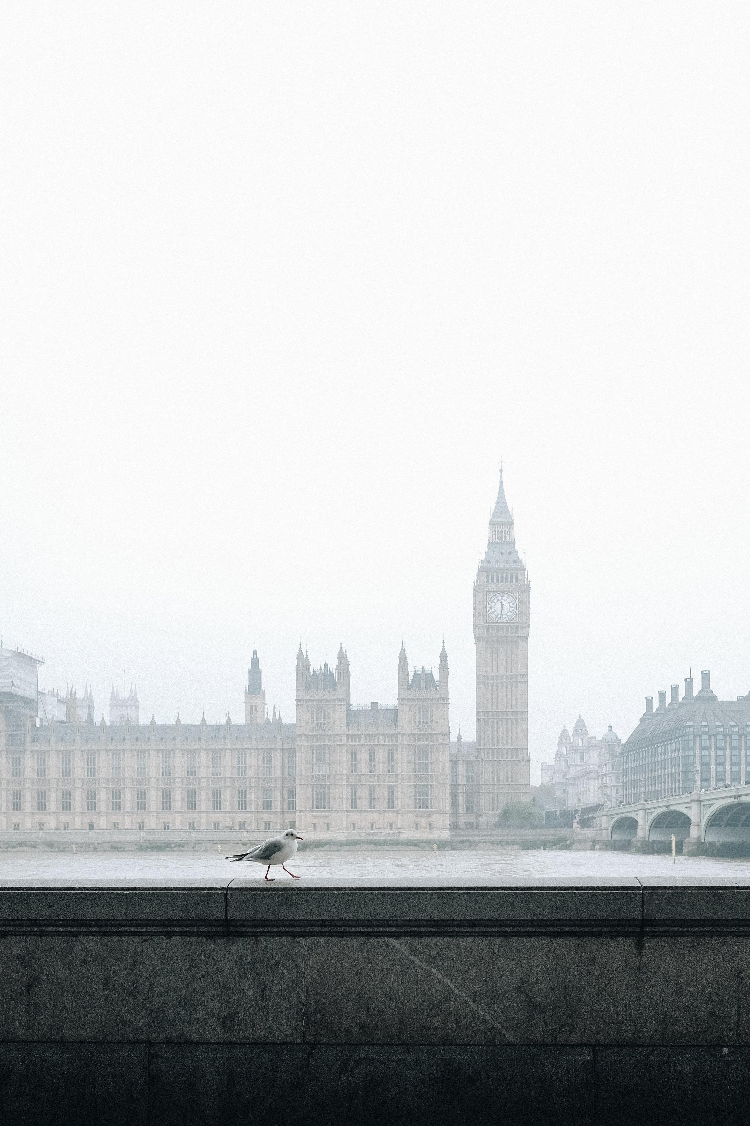 LondonFog-50.jpg
