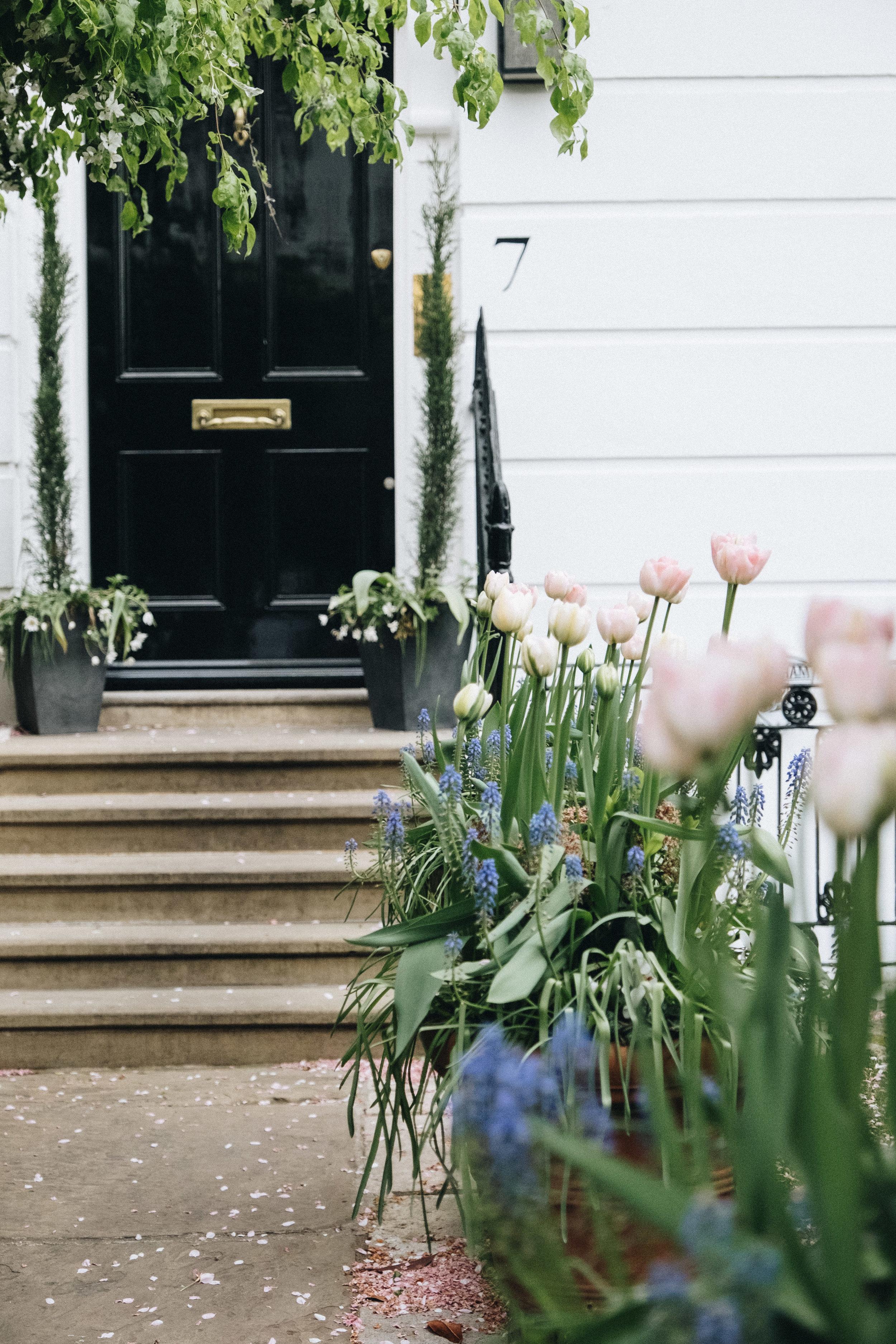 Blossom-114.jpg