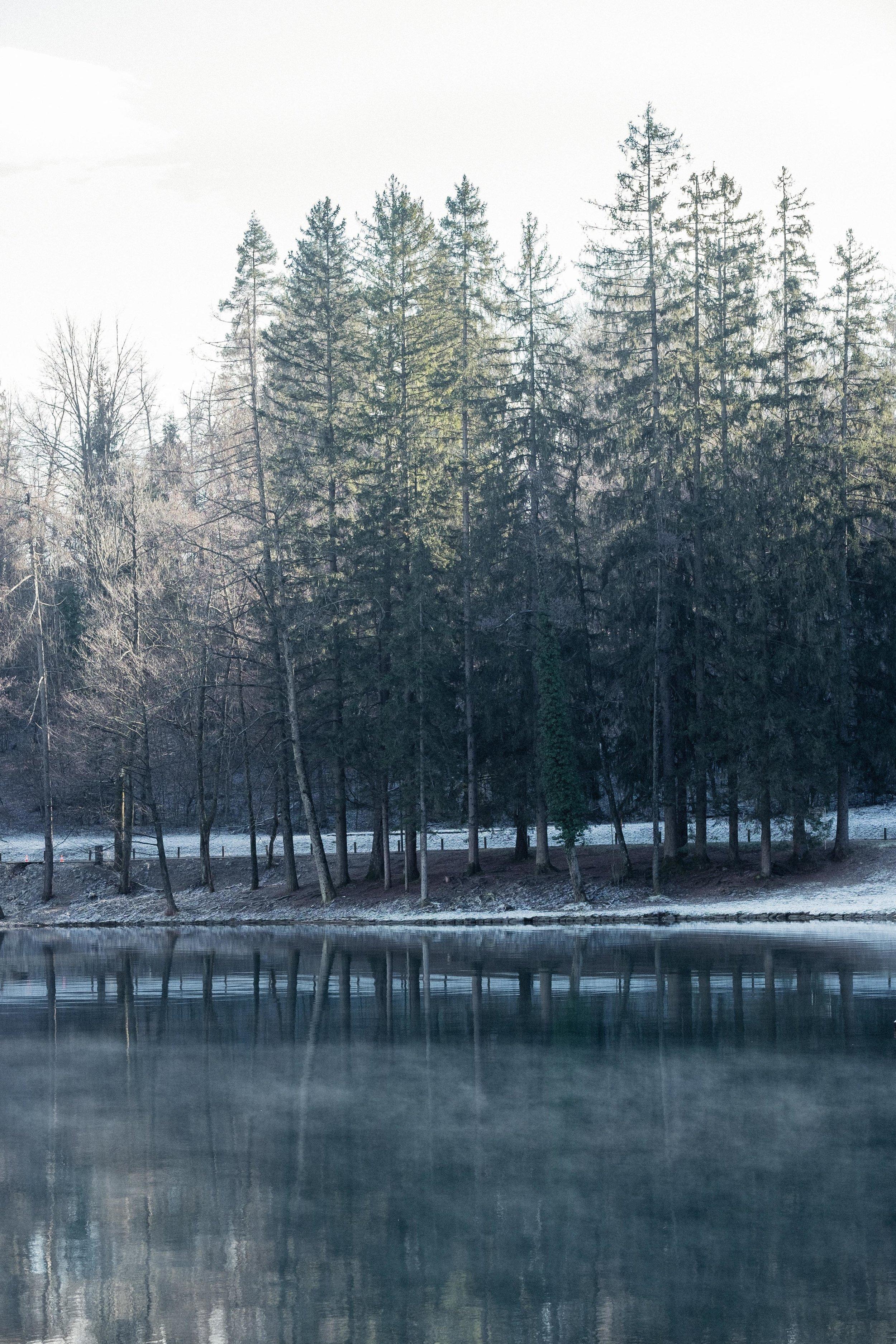 Slovenia-104.jpg