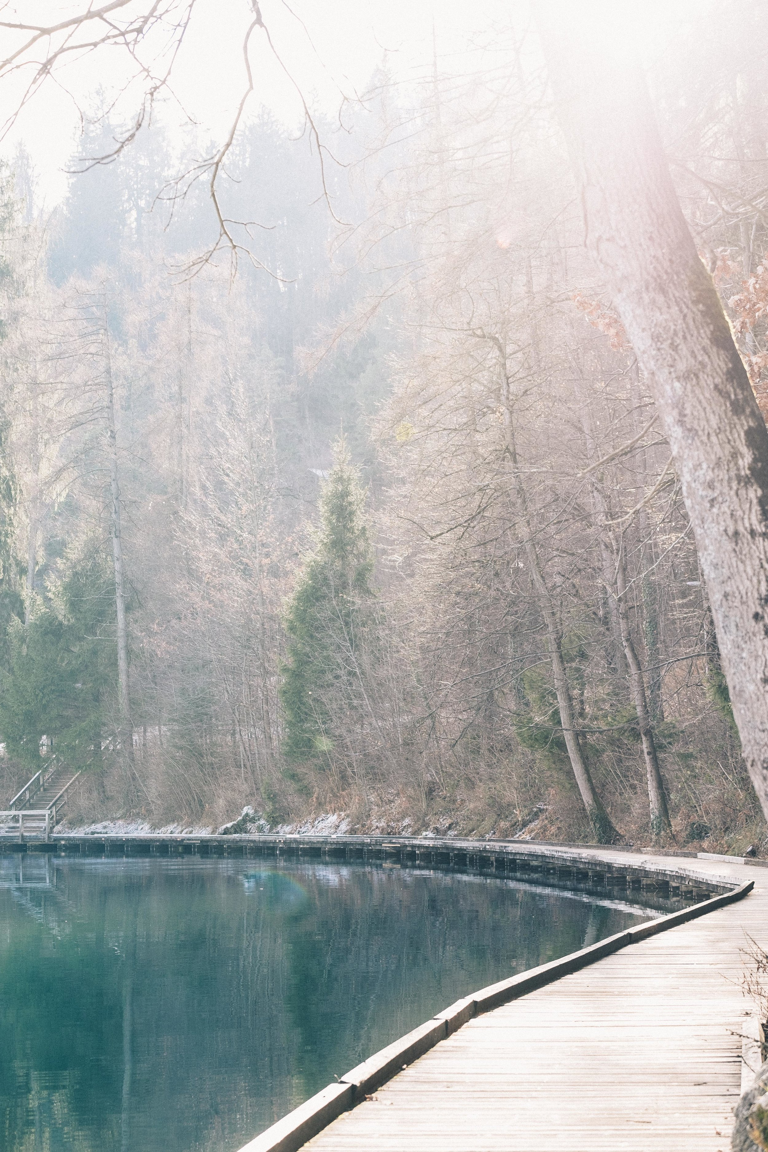 Slovenia-119.jpg