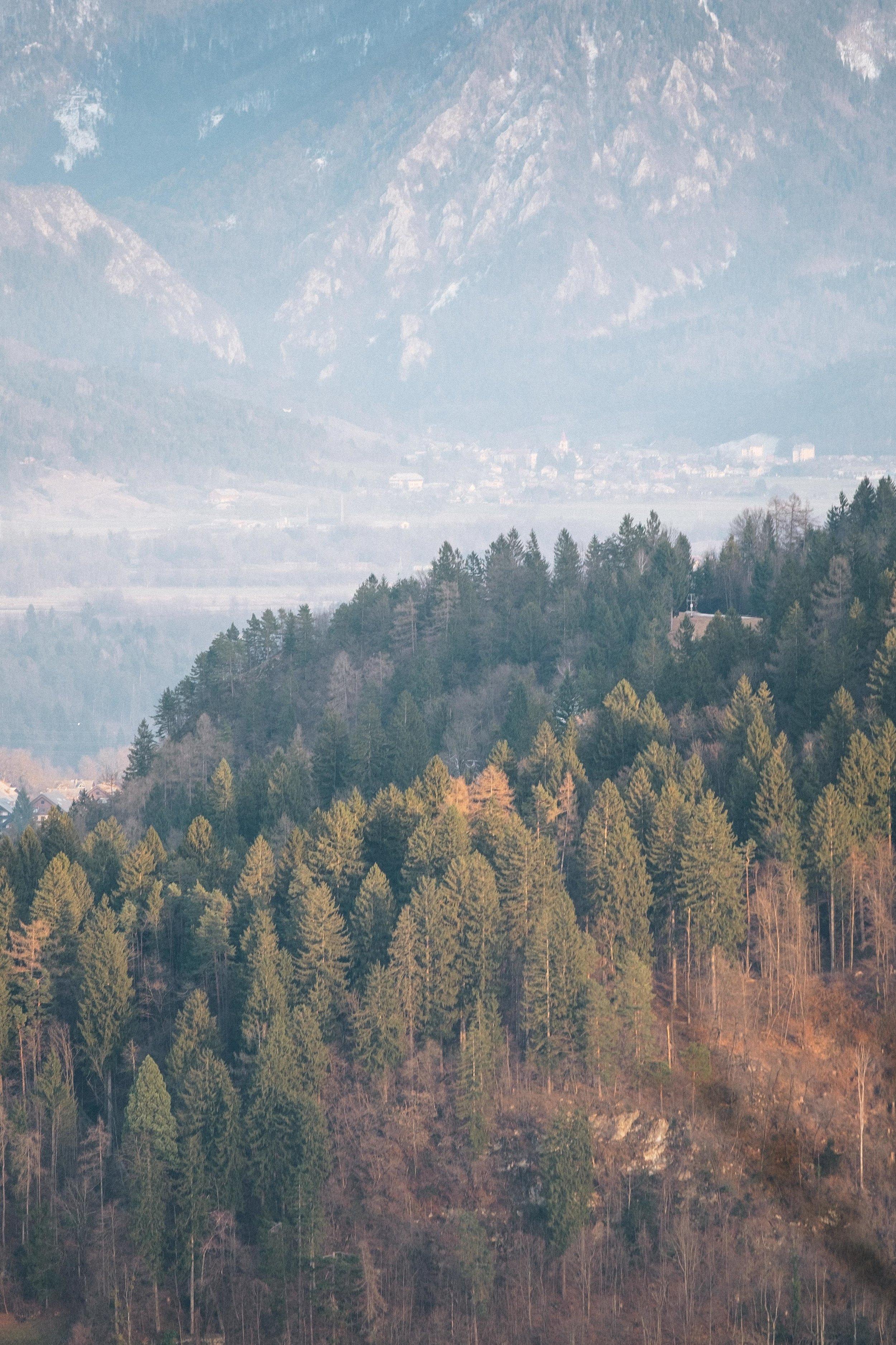 Slovenia-154.jpg
