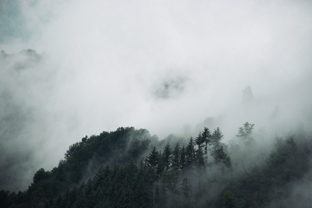 Italia 18 Fog Small-5.jpg