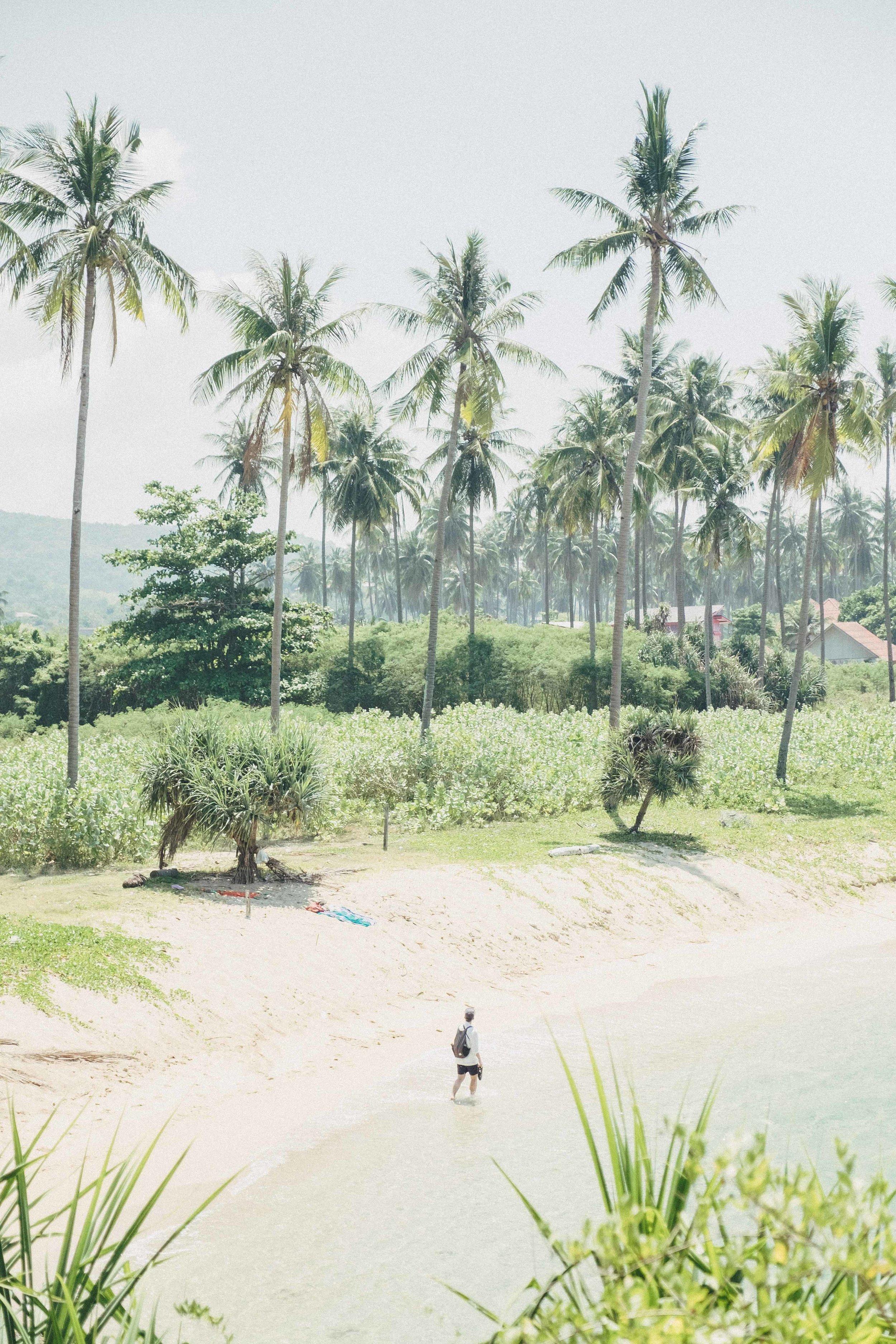 Thailand-91.jpg