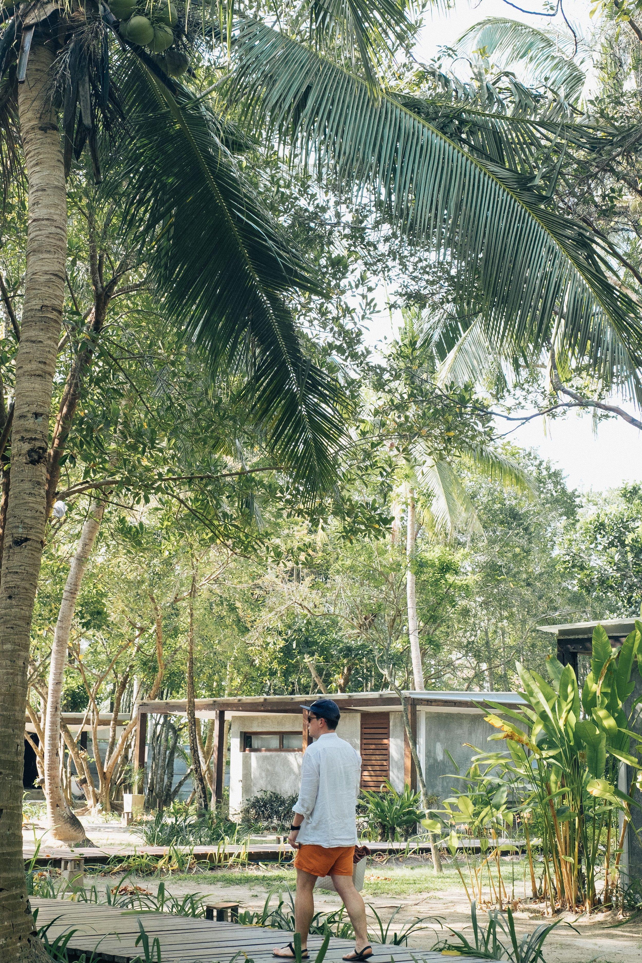ThaiPrint-98.jpg