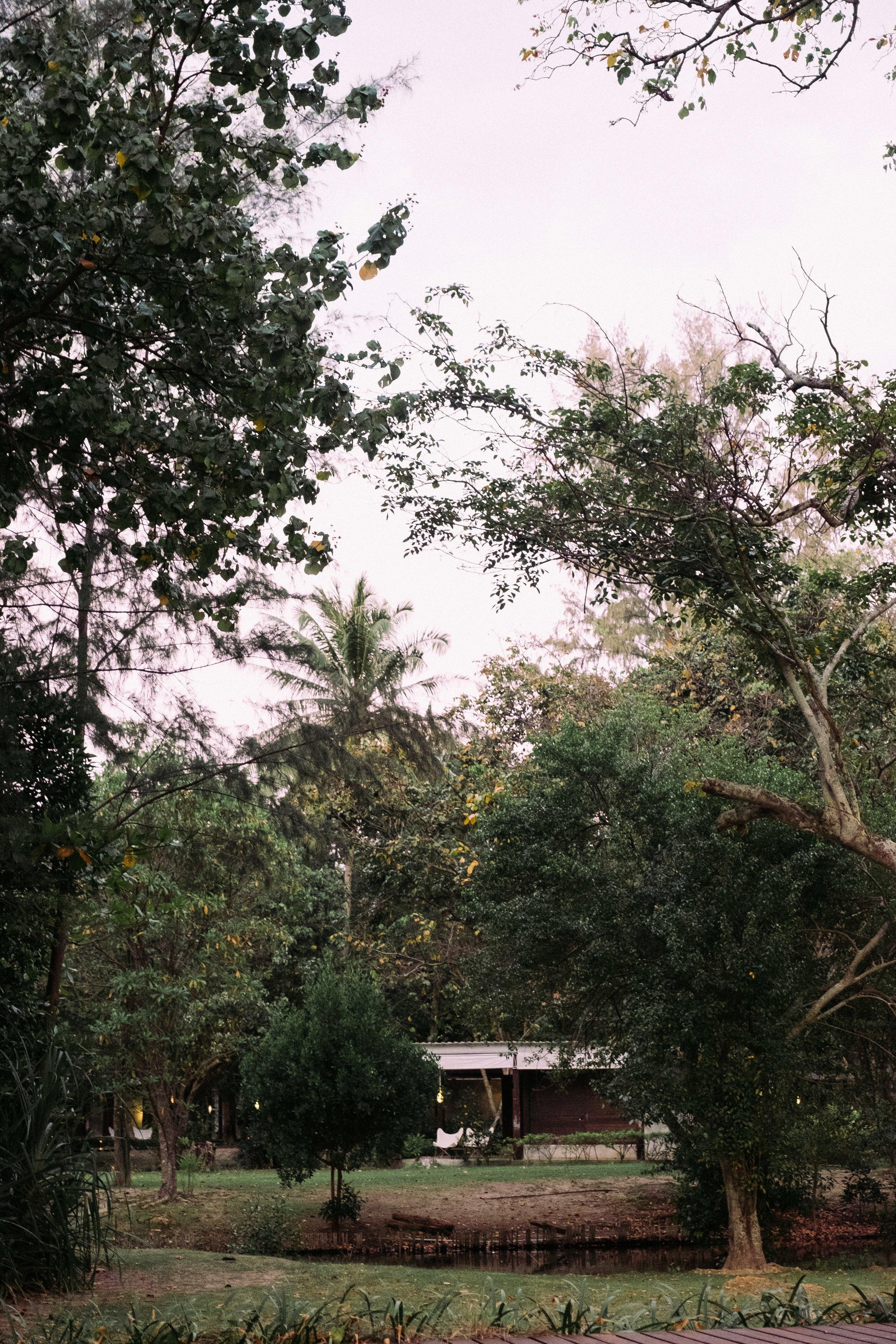 ThaiPrint-58.jpg