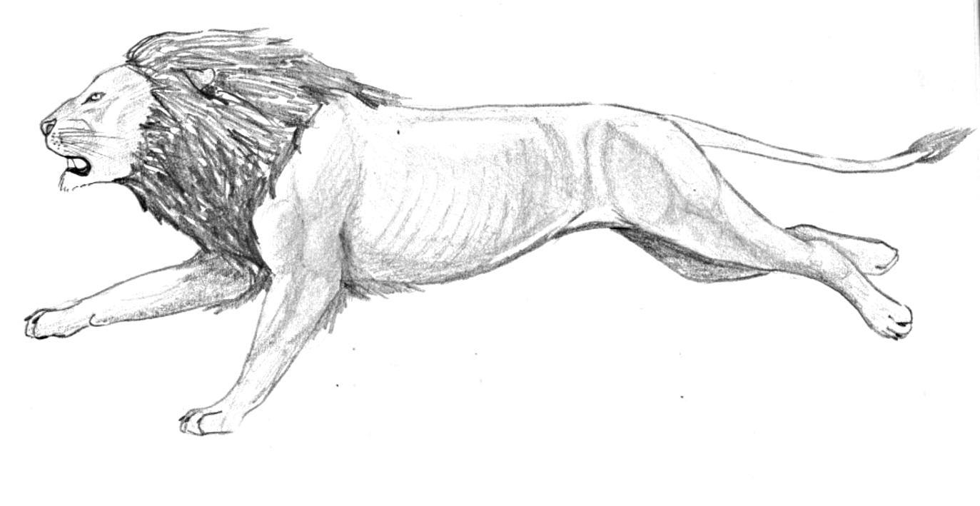 Running Lion for Rosh