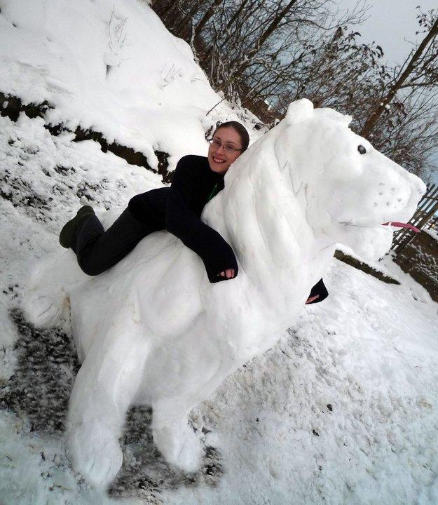 Logan Lion