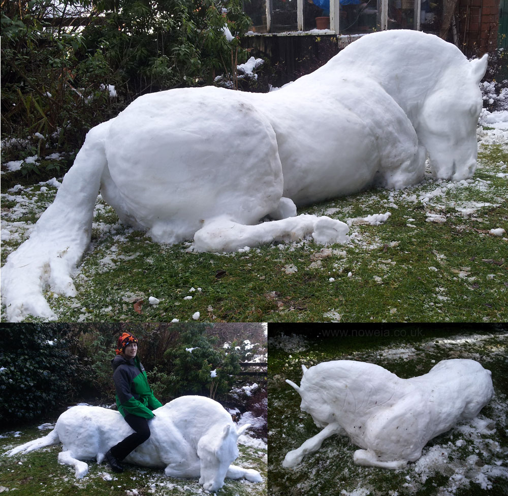 Snow Stallion