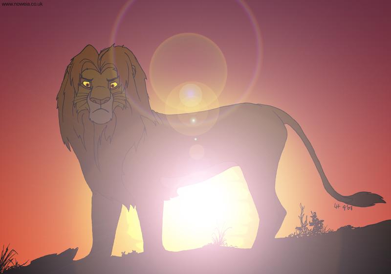 3) Light