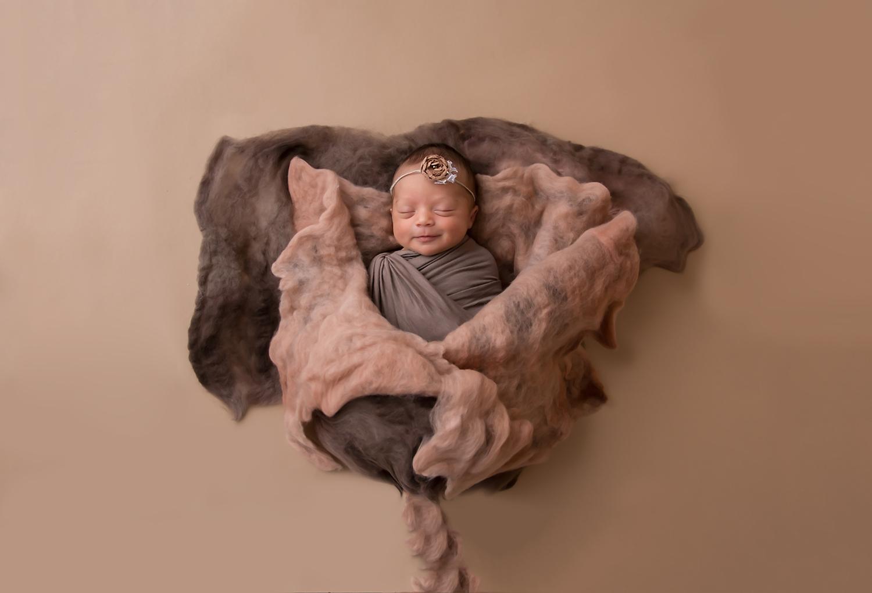 Wellington Newborn Photographer