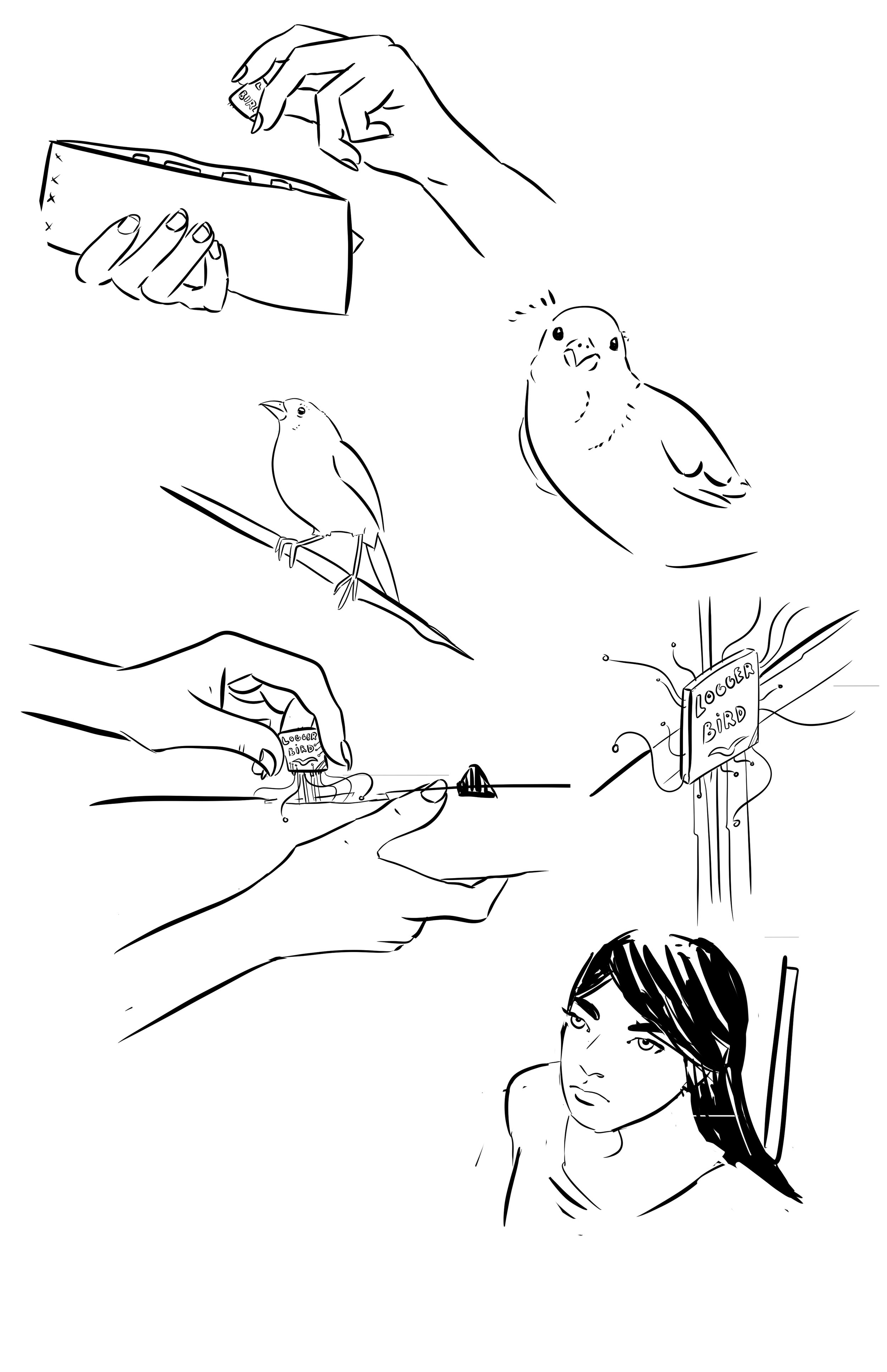 tilted sun line art logger bird and gray woman.JPG