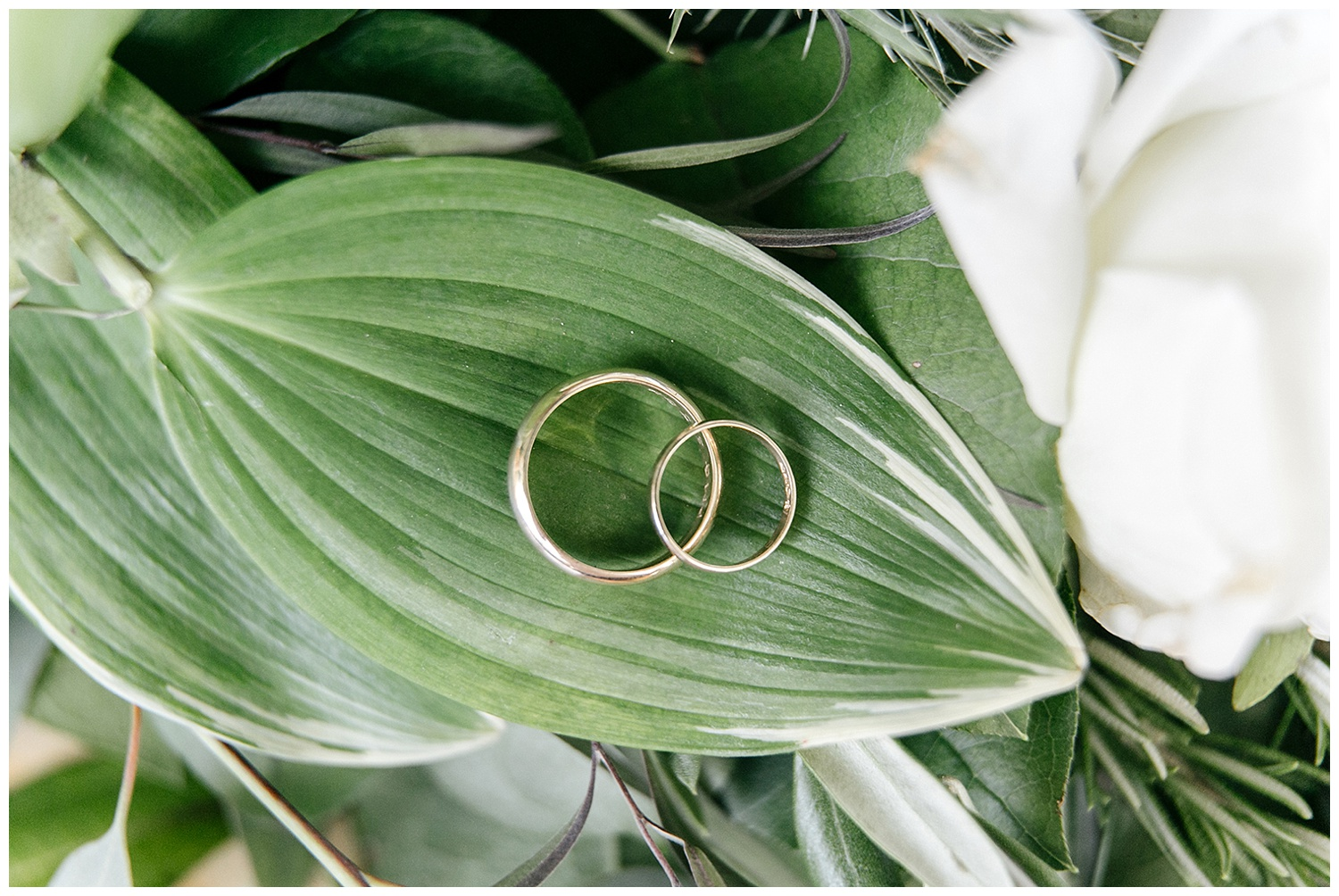 Red Oak Weddings | New York, New Jersey and Pennsylvania wedding vendors, resources and inspiration for the modern couple |
