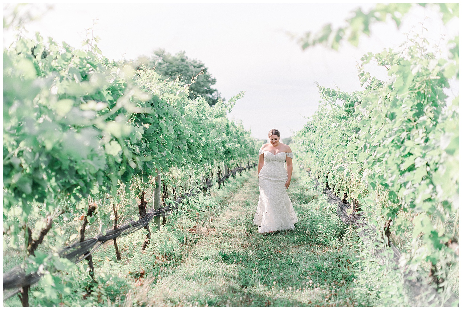 The Vineyards at Aquebogue Wedding | North Fork Wedding | Vineyard Wedding | Aquebogue, NY | www.redoakweddings.com