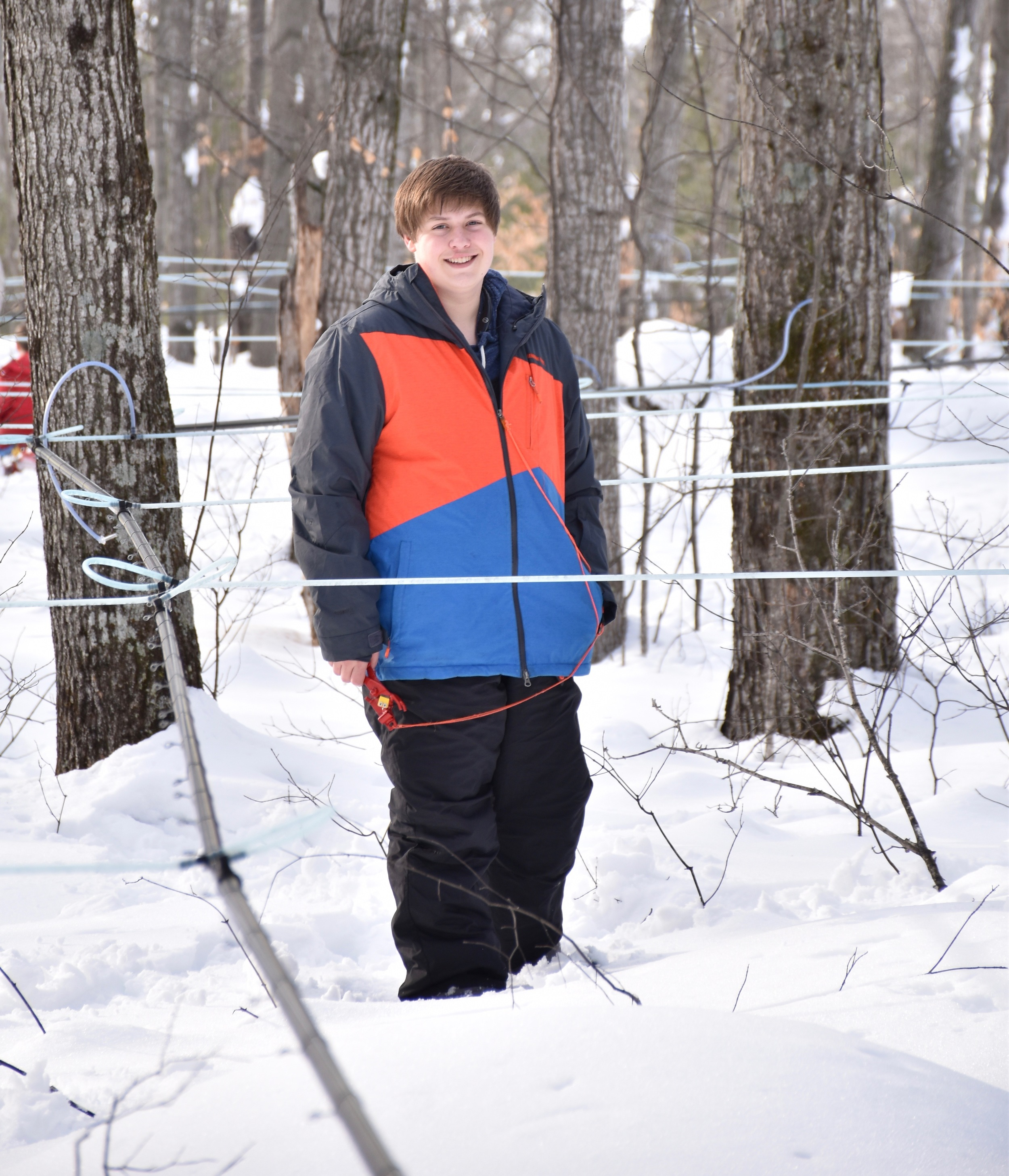 A grandson helps tap the trees in the late winter.