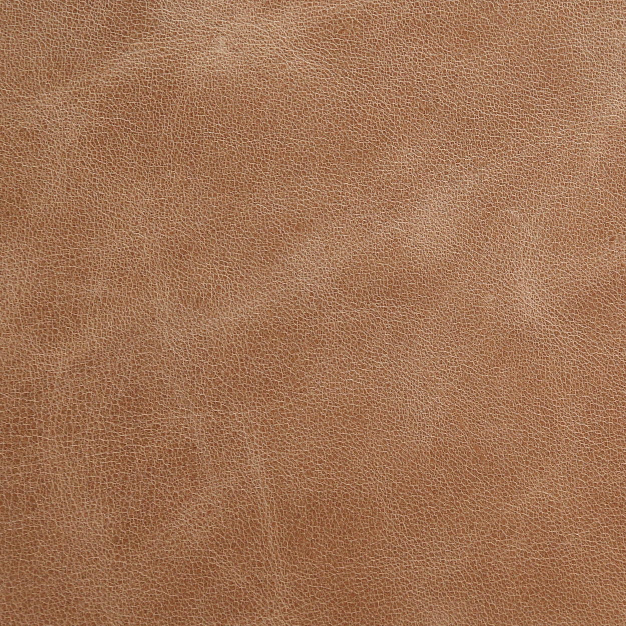 Leather-Distressed-Sahara.jpg