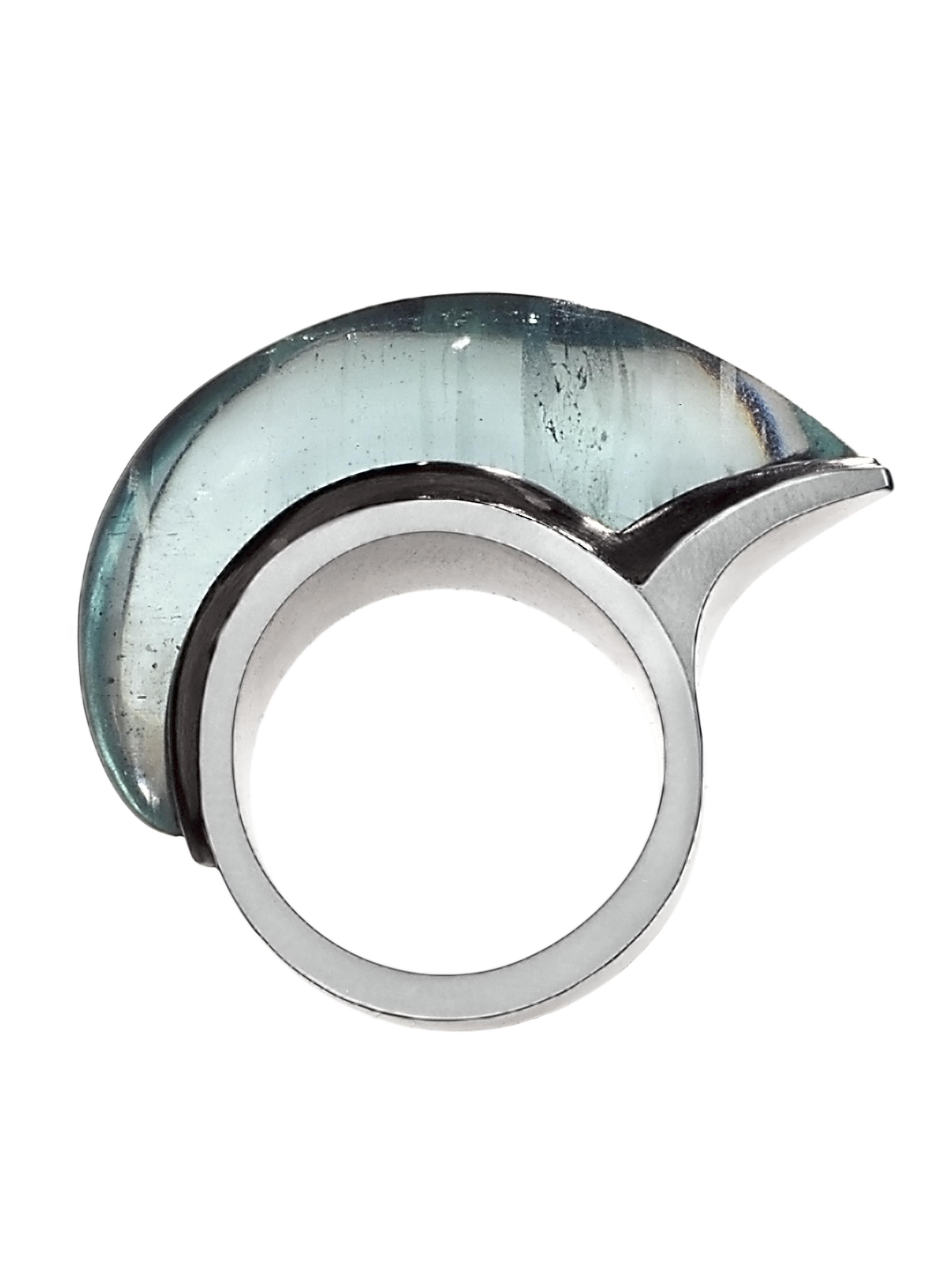 Fish Ring 2005