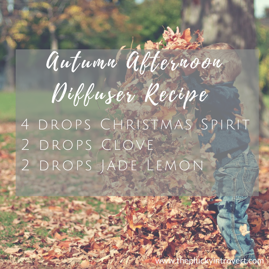 This amazing diffuser recipe brings back the feeling of jumping through leaves as a kid...I love this for fall!