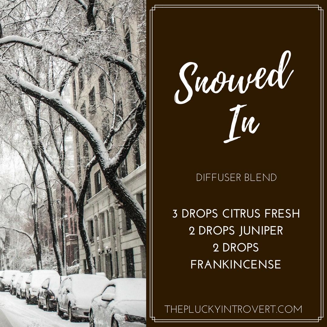 winter diffuser recipe