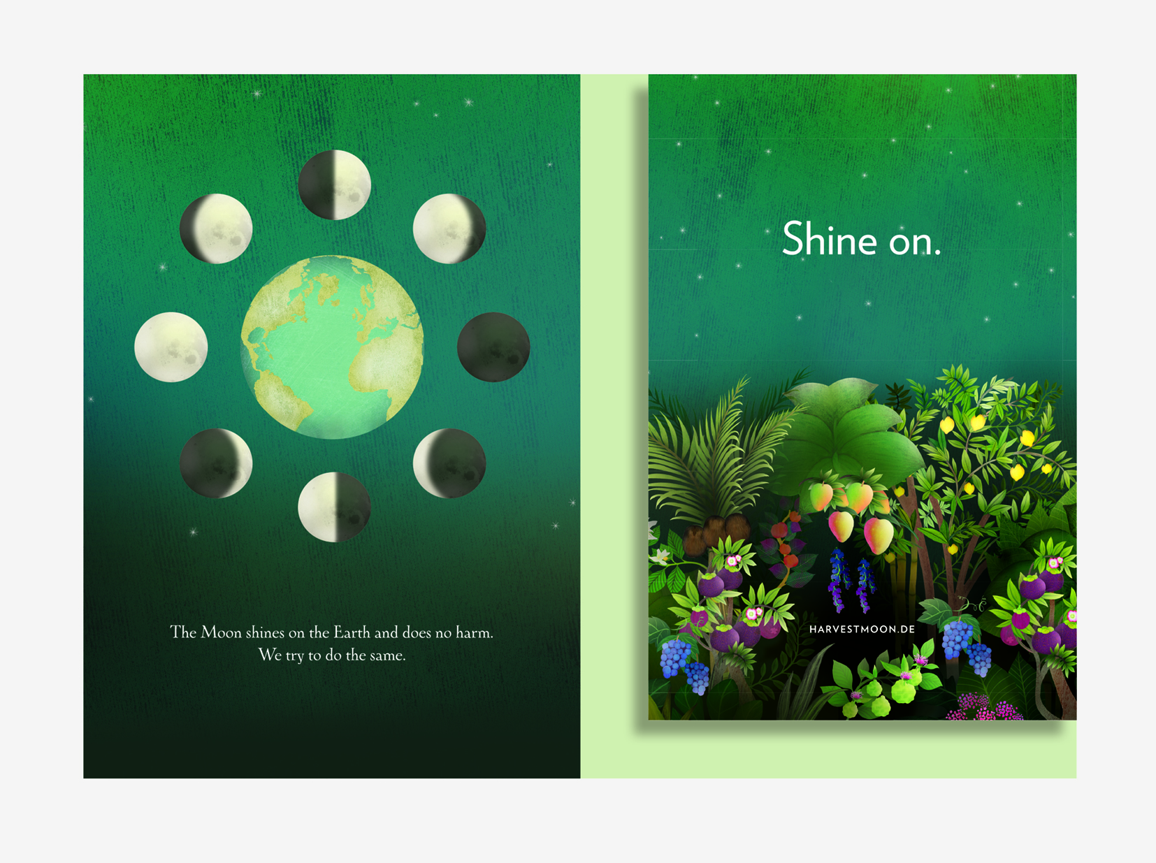 Above: Covers and selected spreads from the Harvest Moon brand brochure. Illustrator,  Anne Smith.