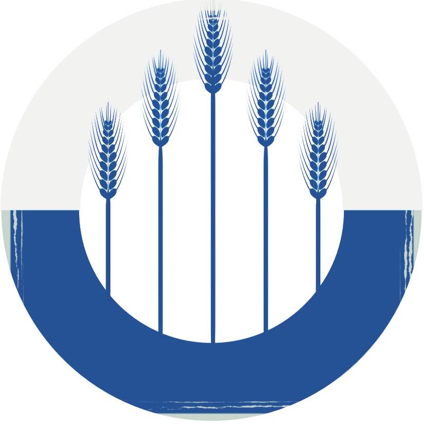blue wheat.jpeg