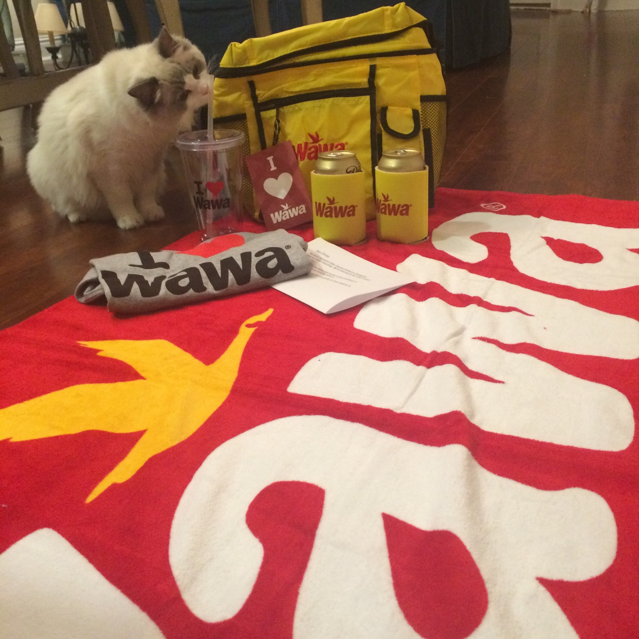 Wawa sent me some pretty cool gear for the video I just created!    Cat not included.
