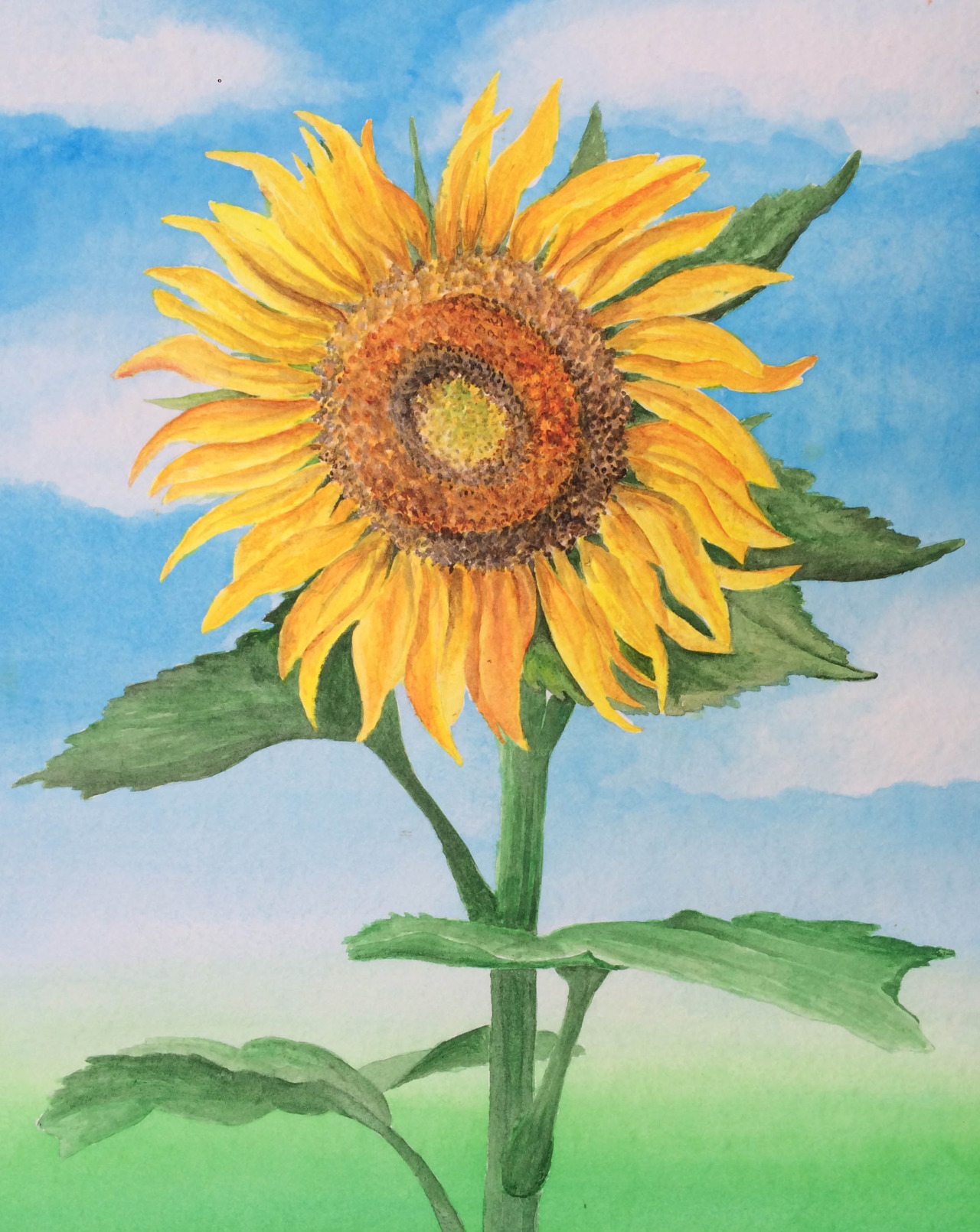 Watercolor, 16x20 in.  Commissioned sunflower painting.     I'm definitely still getting used to this medium but I've now conquered my fear of watercolor and I am excited to keep experimenting with it!