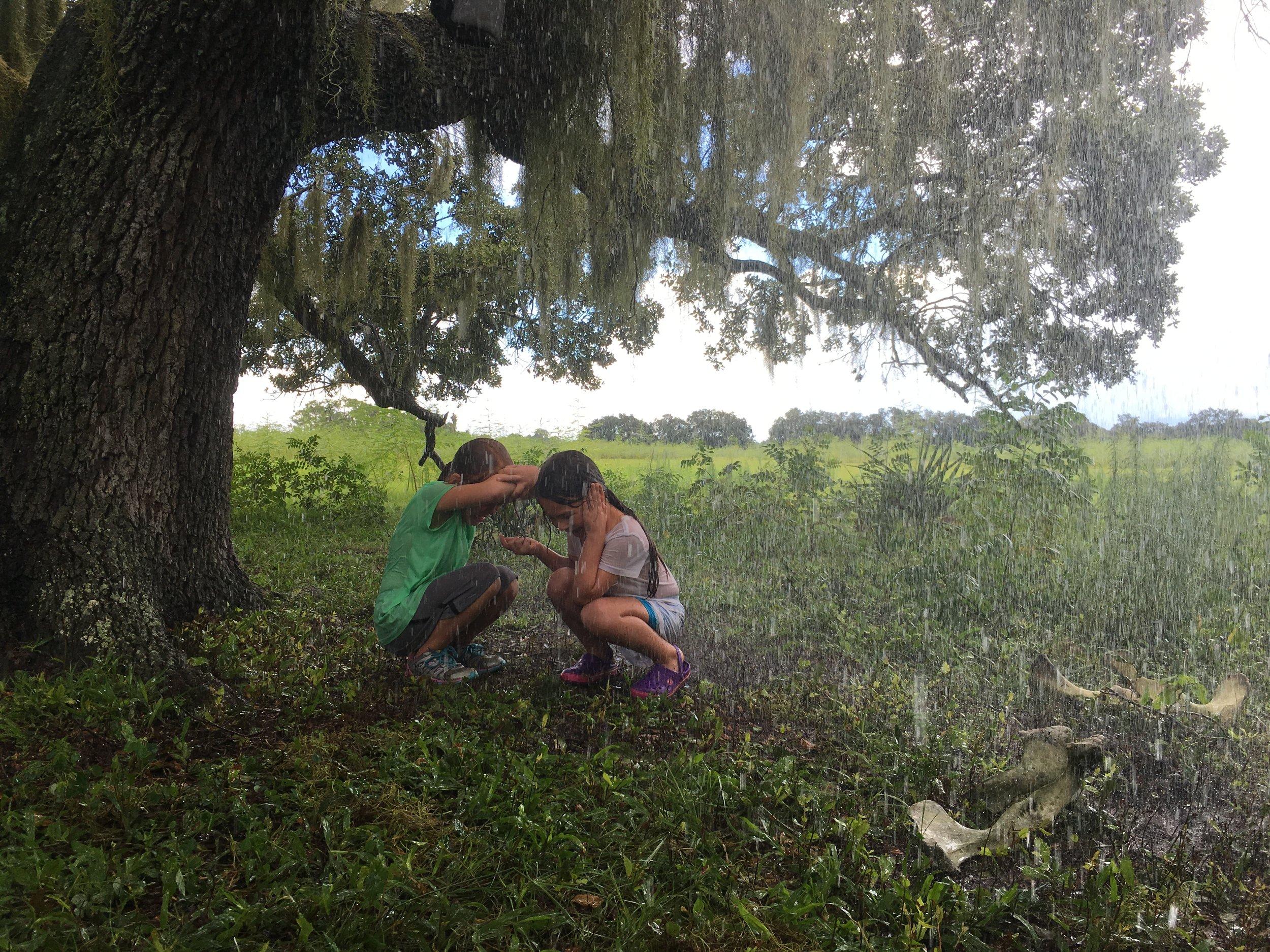 2017 Florida Project.jpg