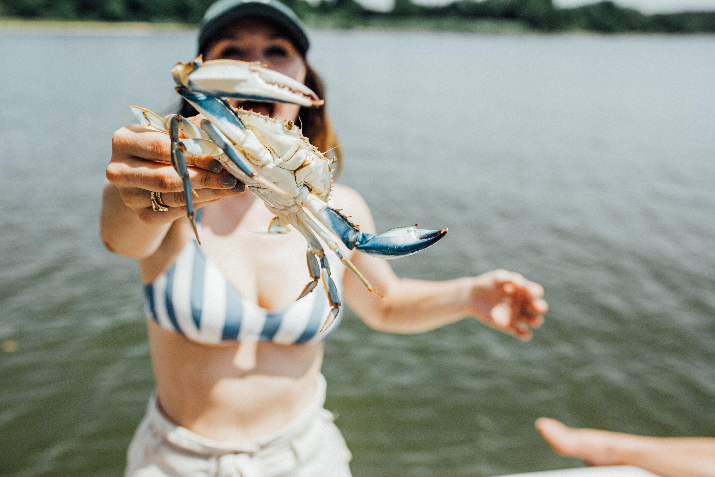crabs-75.jpg