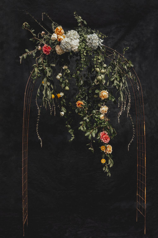 sidneykraemerphotography_florals-2.jpg