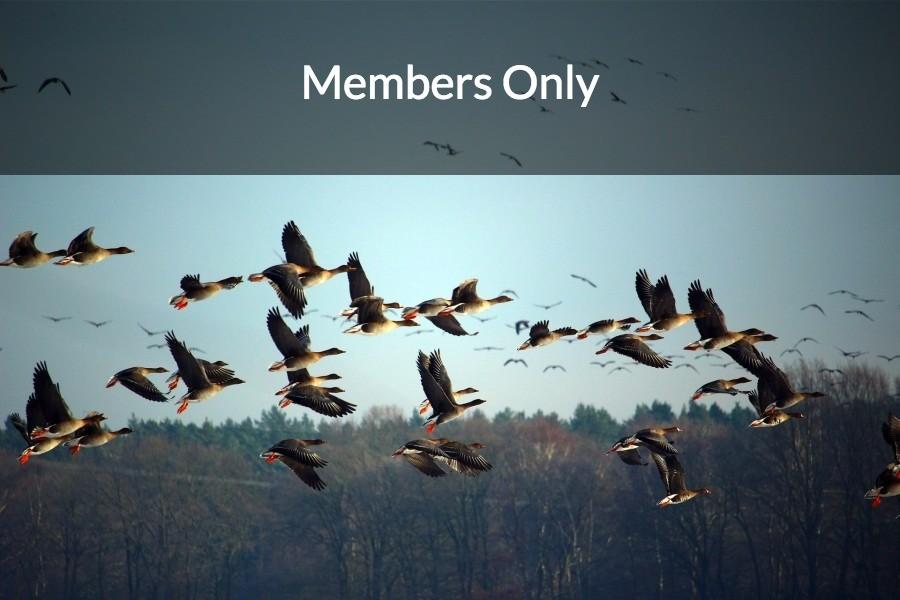 members-only-vpcc.jpg