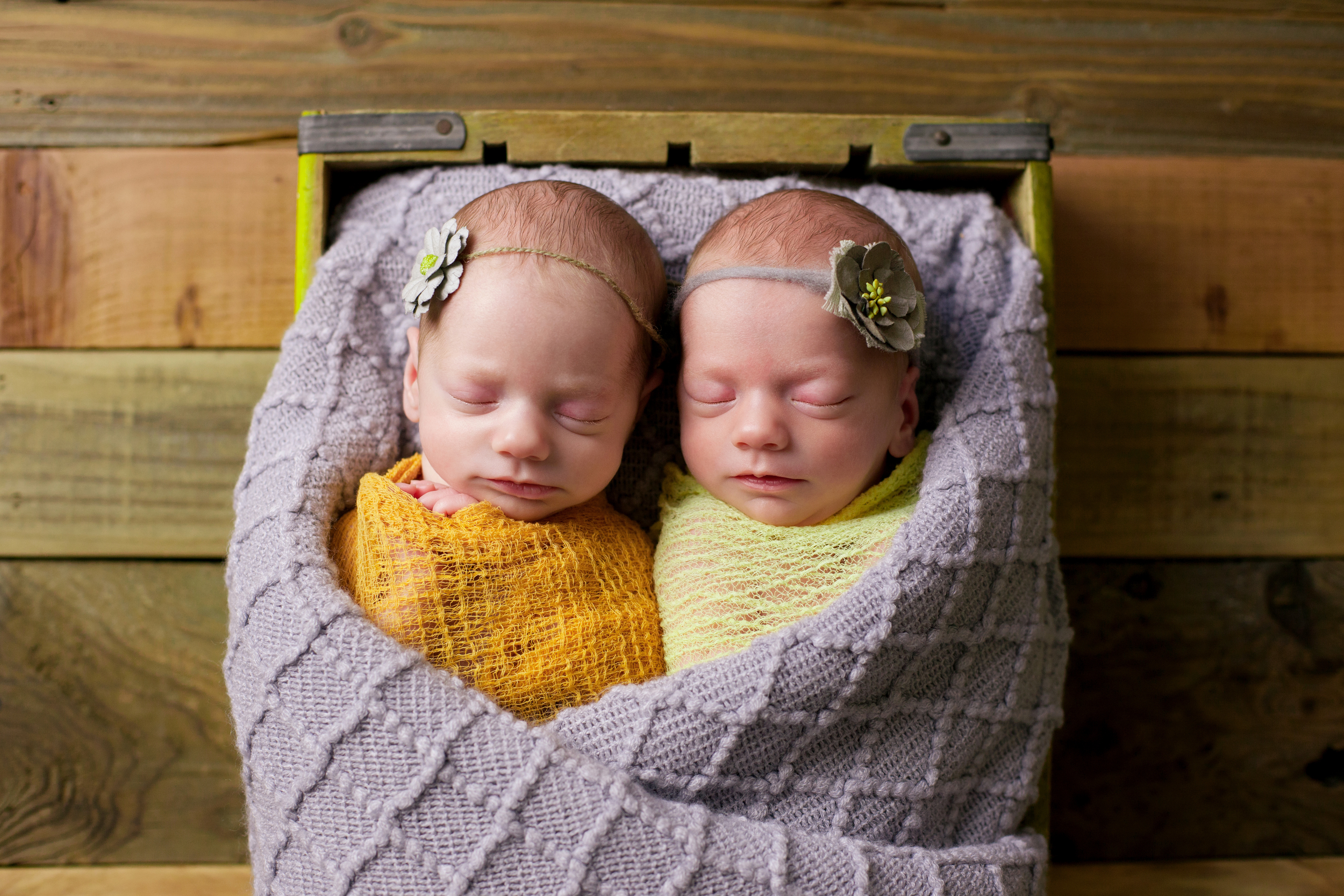johnson newborns-23.jpg