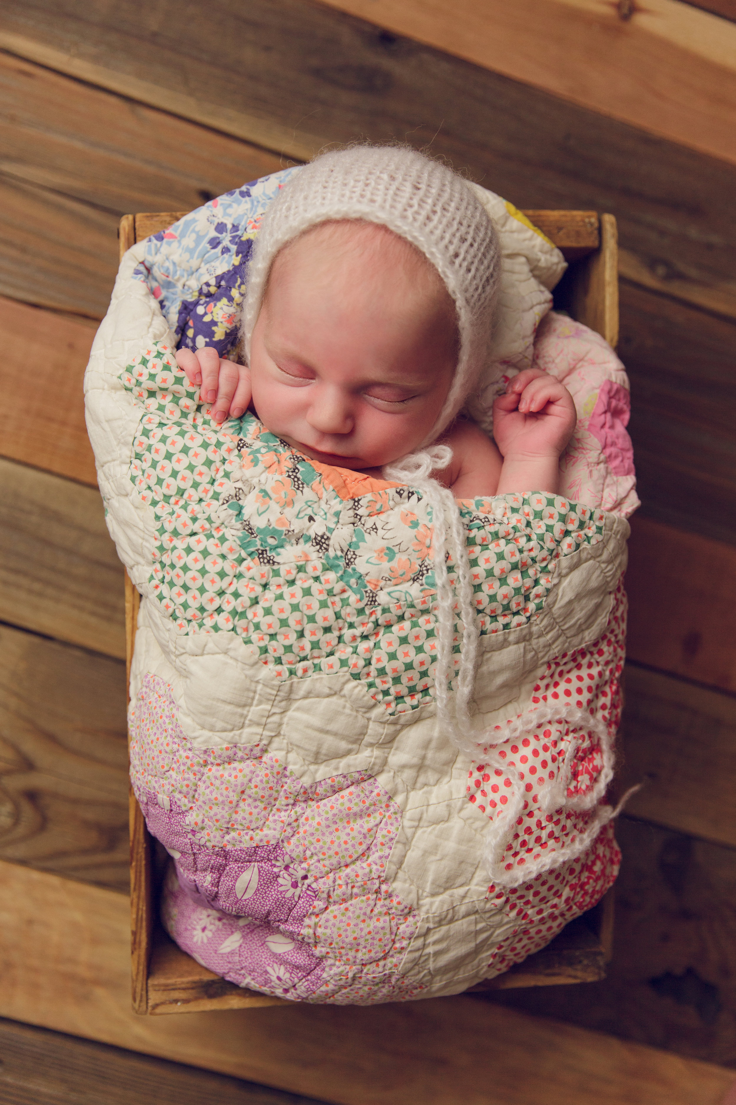 lily newborn -36.jpg