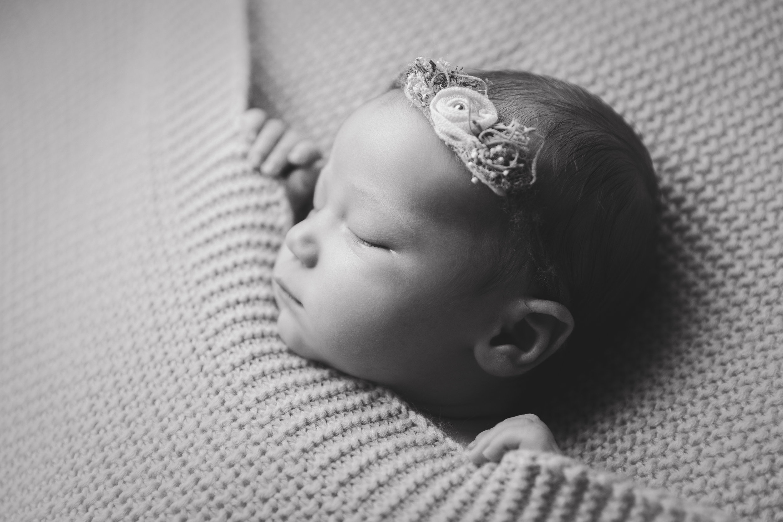molly newborn photo  (46).jpg