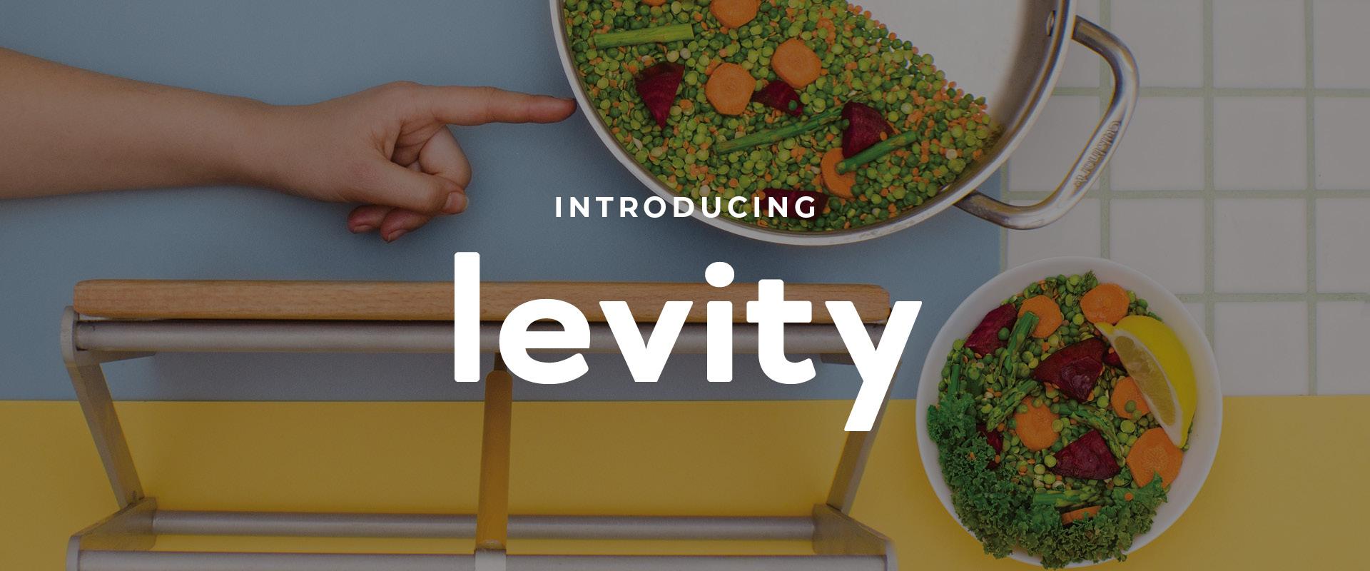 Introducing Levity.jpg