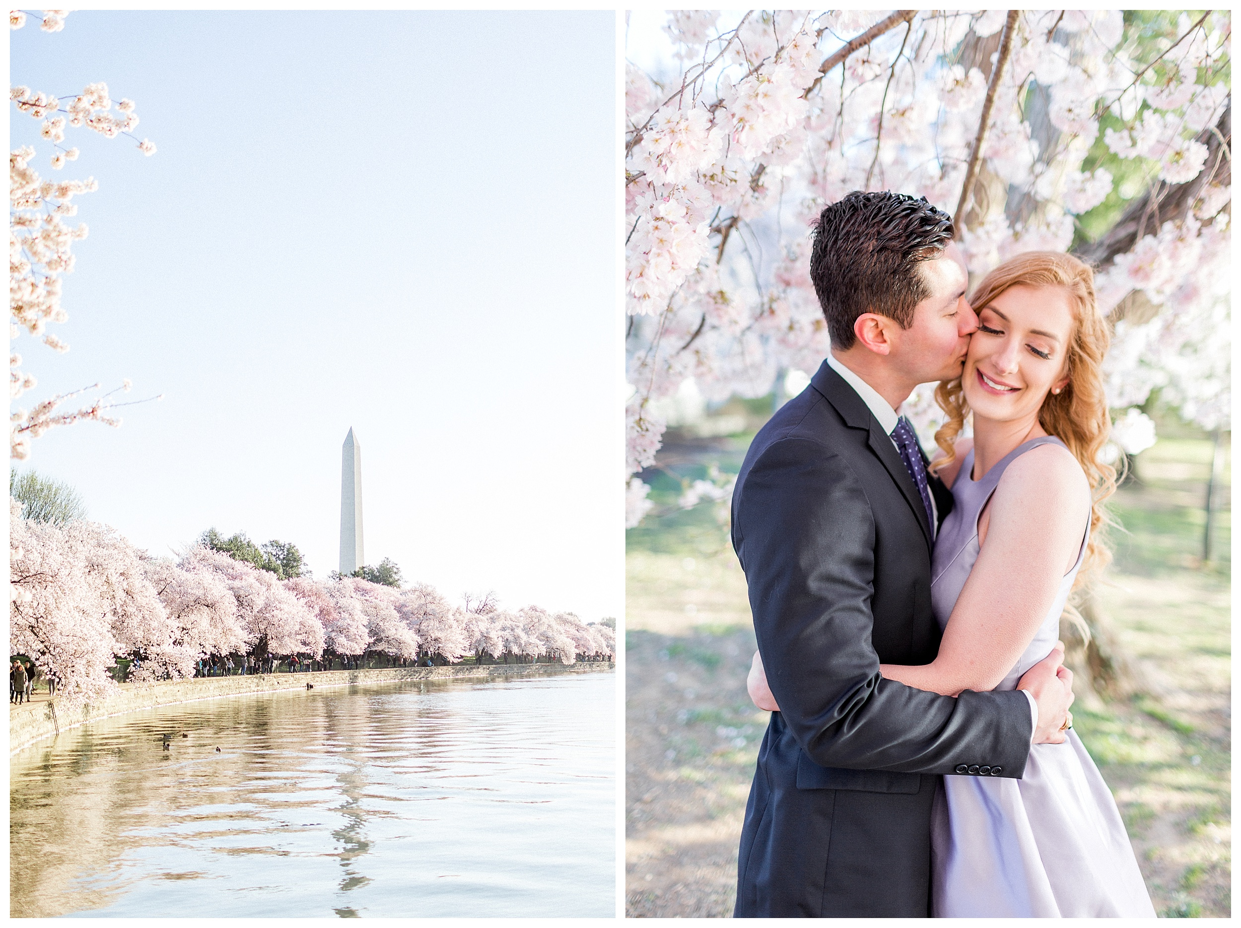 Washington DC Cherry Blossom Engagement Session_0002.jpg