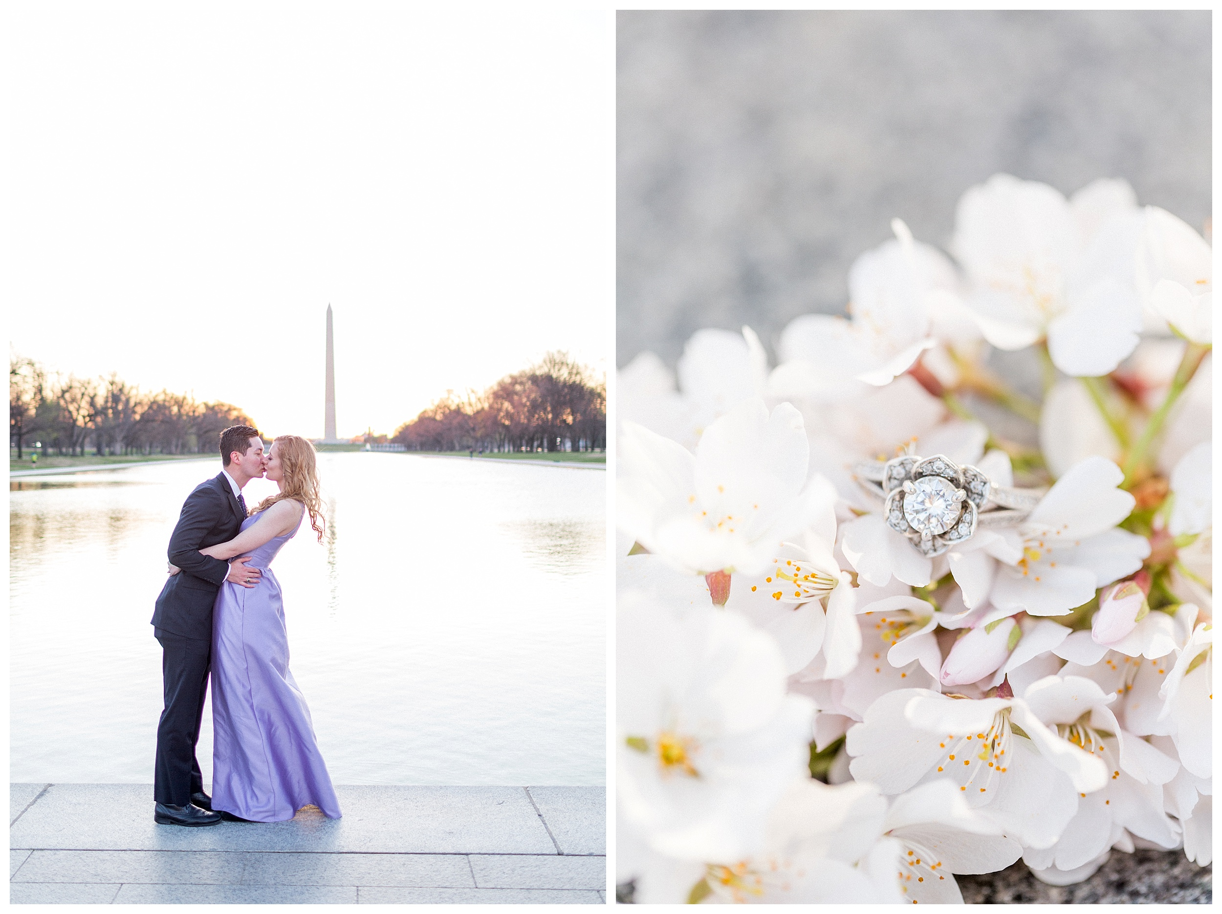 Washington DC Cherry Blossom Engagement Session_0029.jpg