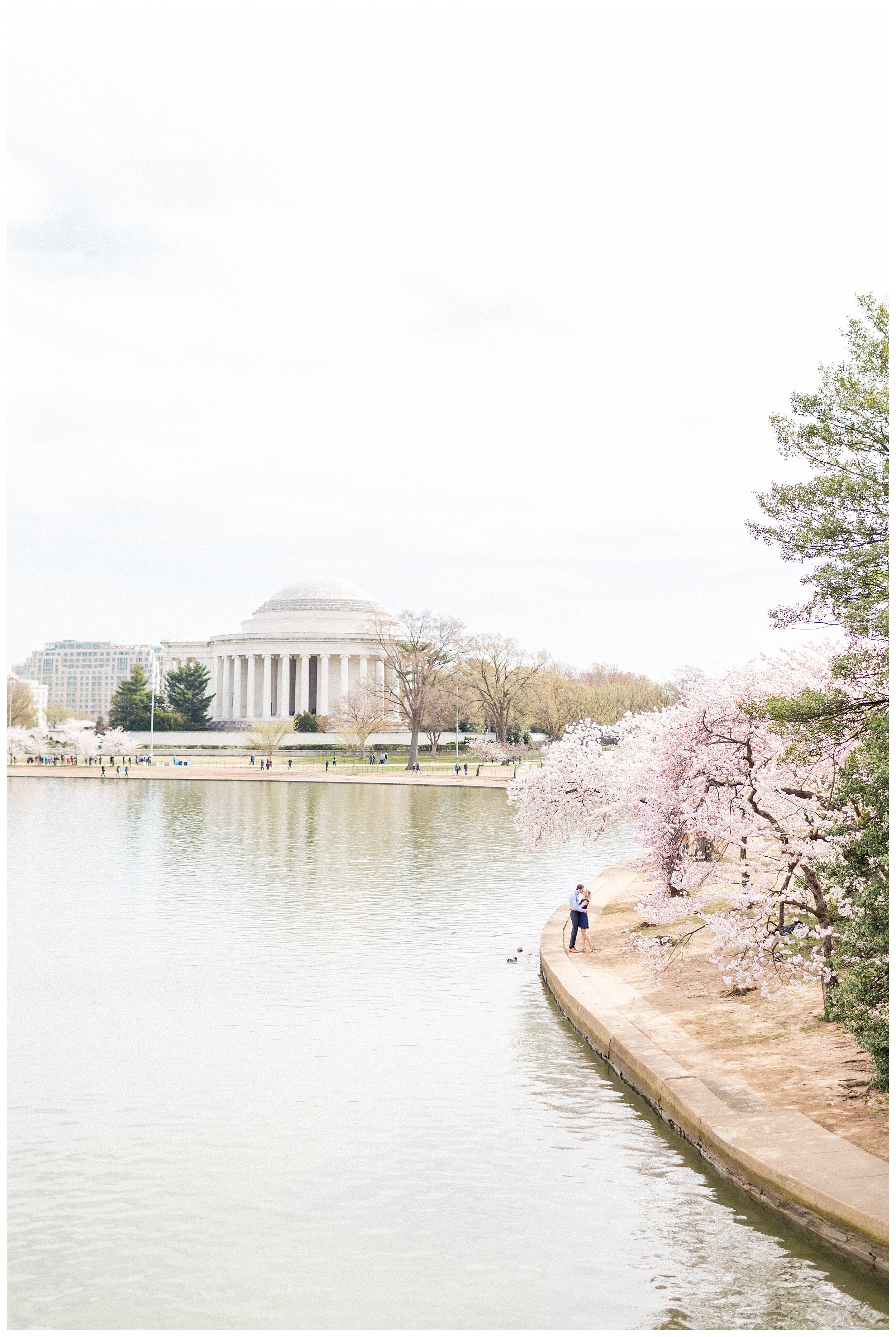District of Columbia Cherry Blossom Engagement Session_0011.jpg