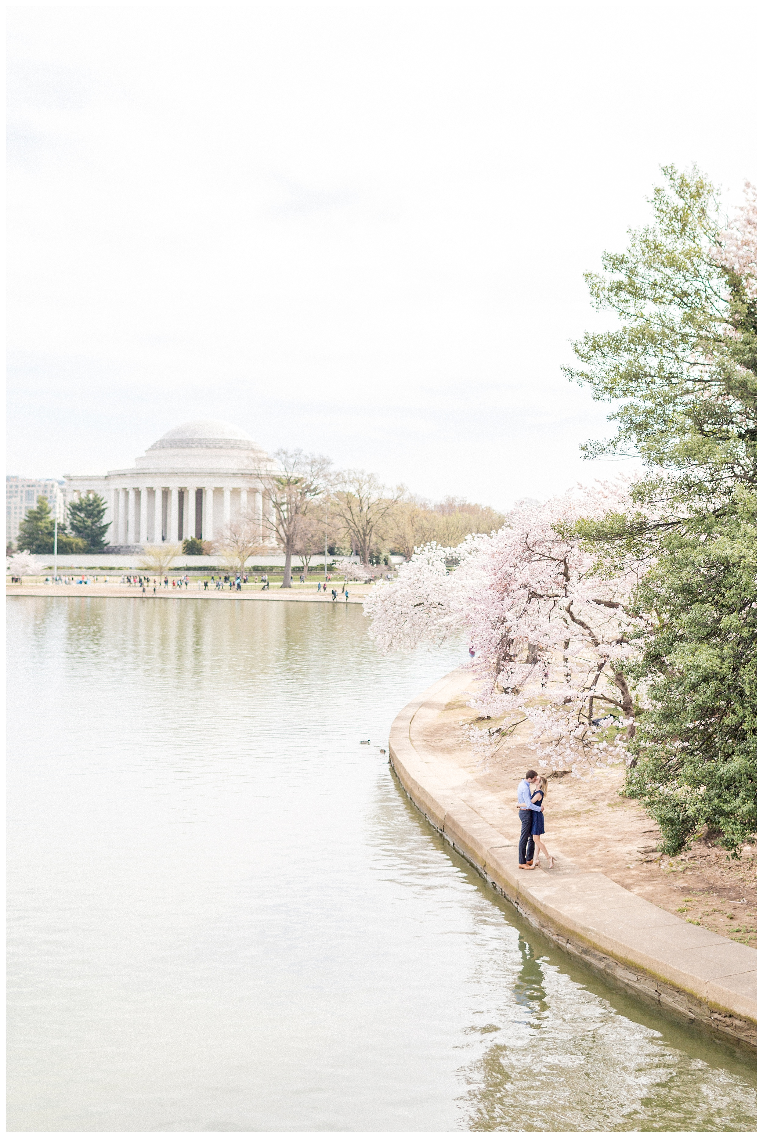 District of Columbia Cherry Blossom Engagement Session_0027.jpg