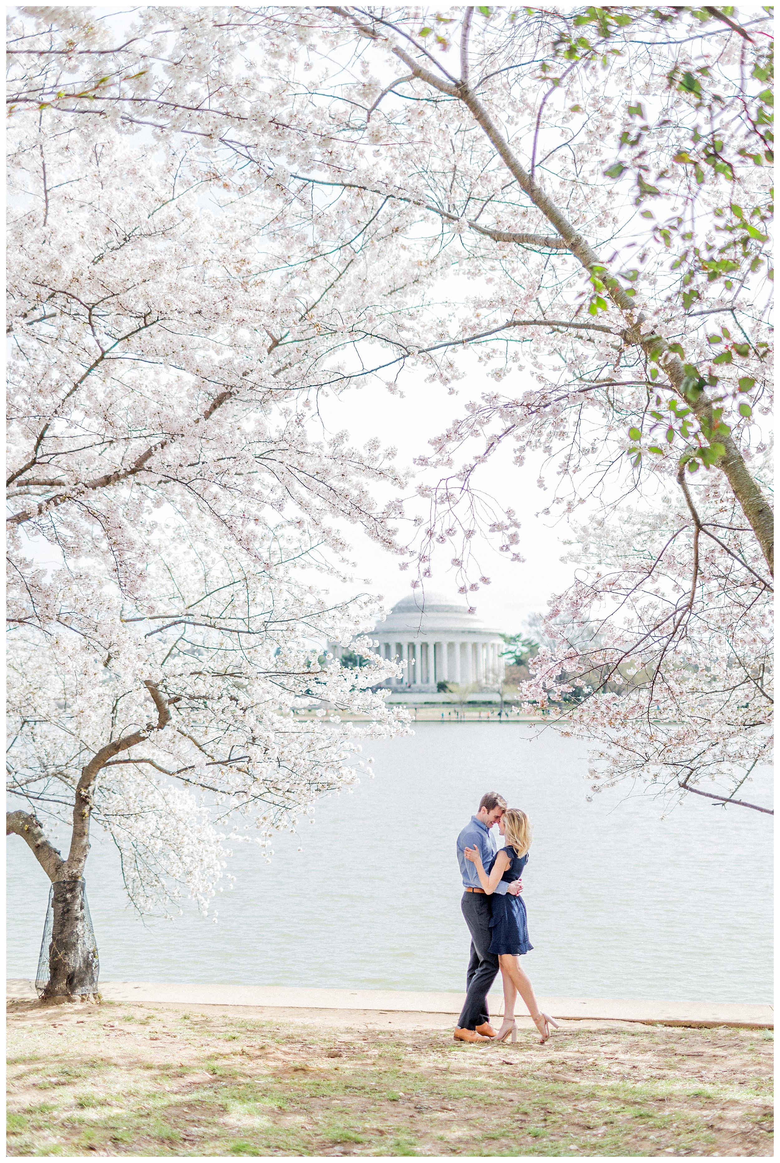 District of Columbia Cherry Blossom Engagement Session_0035.jpg