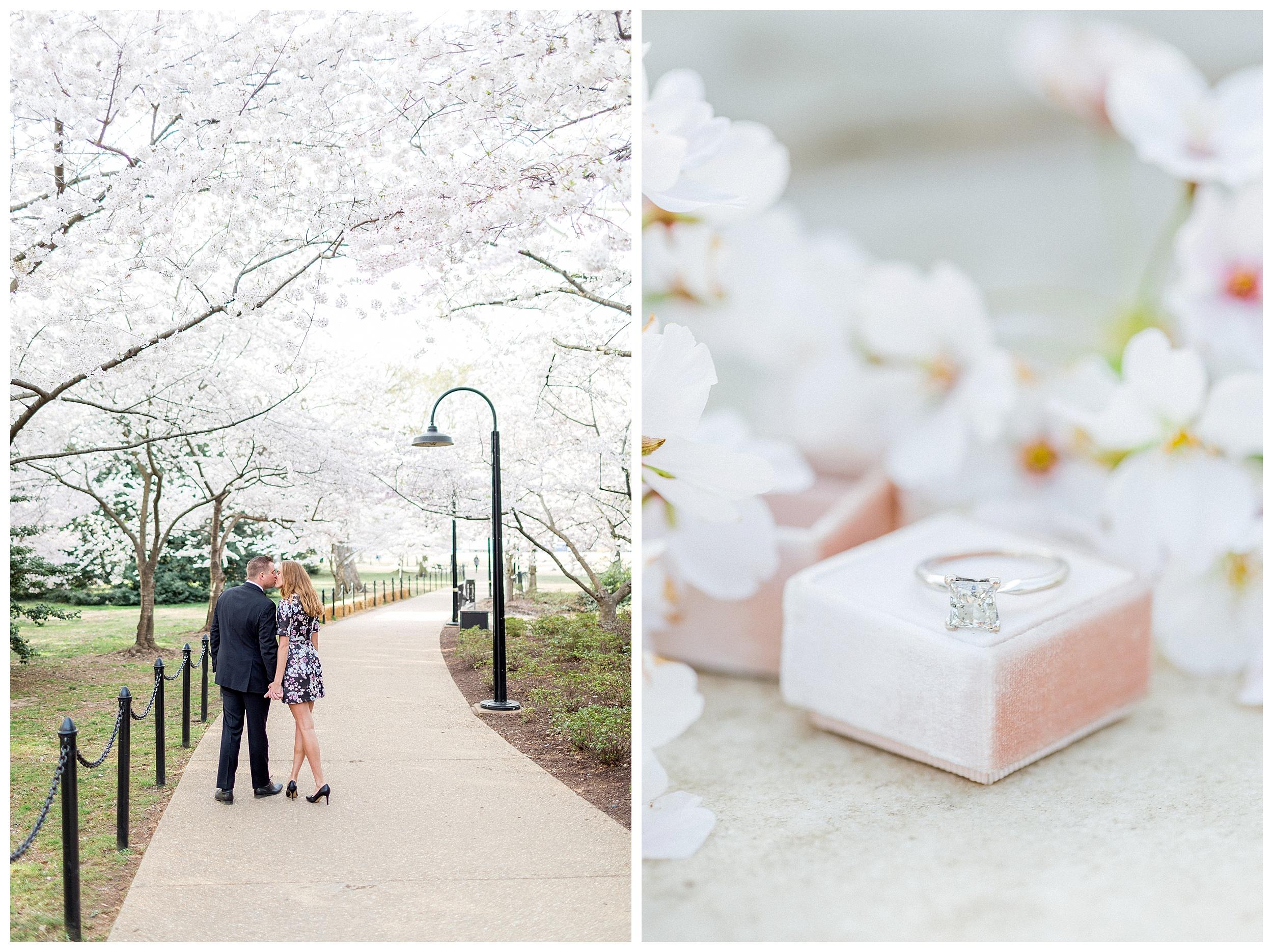 Washington DC Cherry Blossom Engagement_0031.jpg